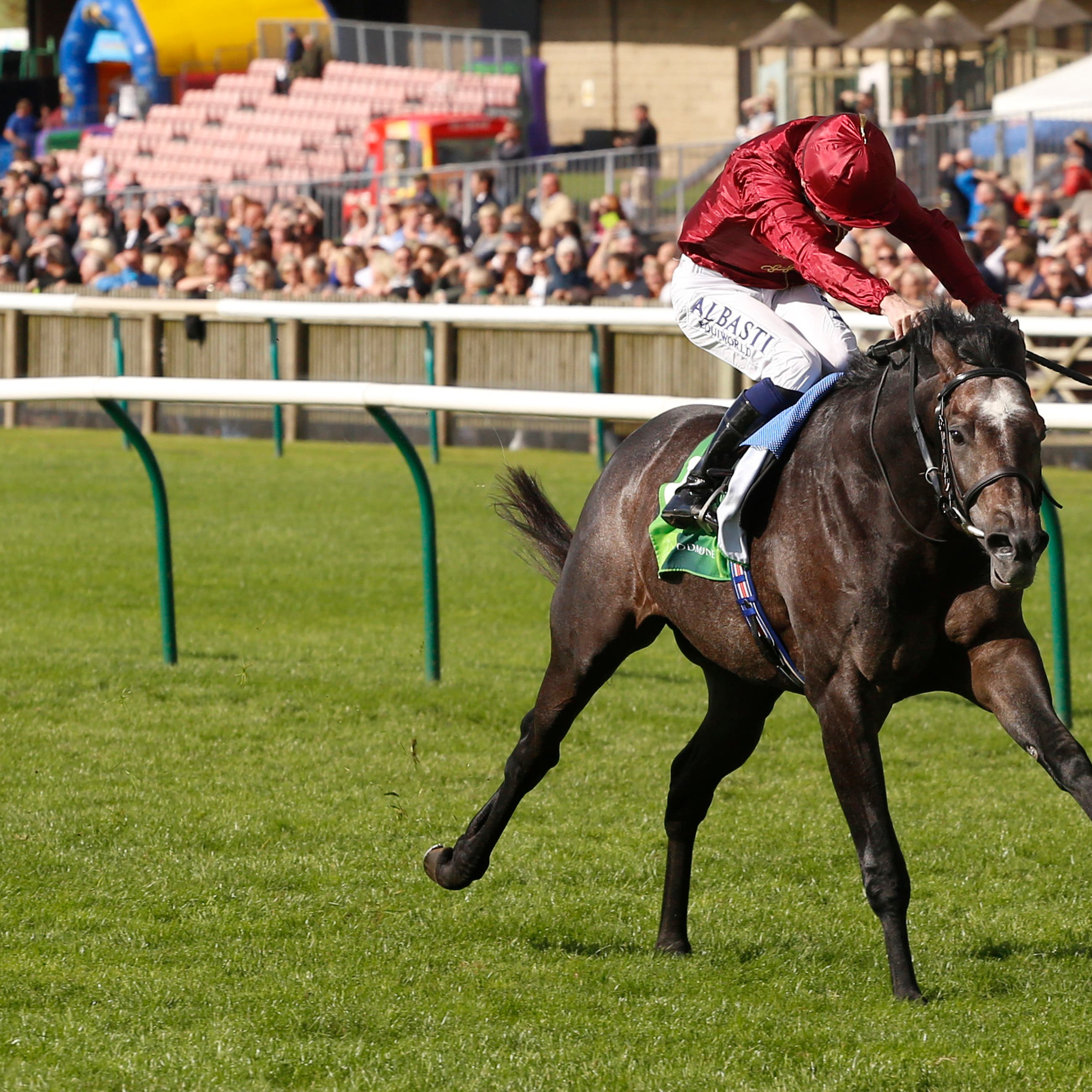 Roaring Lion is the likely favourite for the Betfred Dante Stakes at York on Thursday (Julian Herbert/PA)