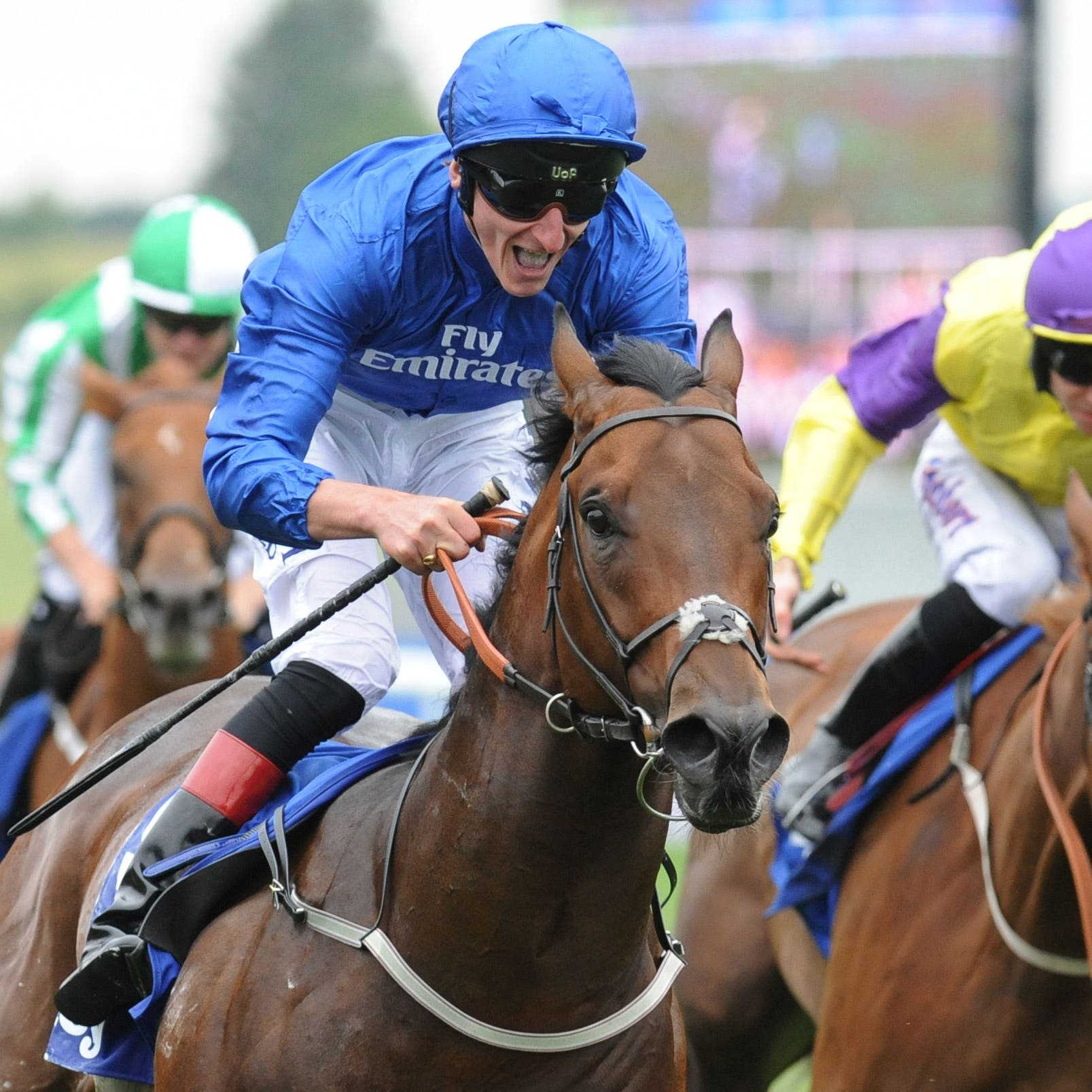 Harry Angel suffered a cut leg in the stalls before the Diamond Jubilee