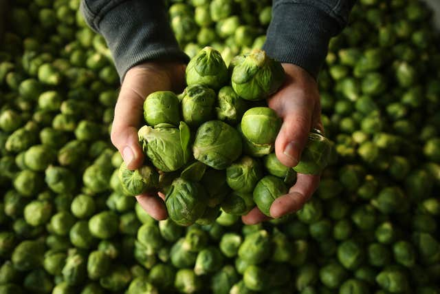 Many Brussels Sprouts died off due to the exceptionally hot May (Brian Lawless/PA).