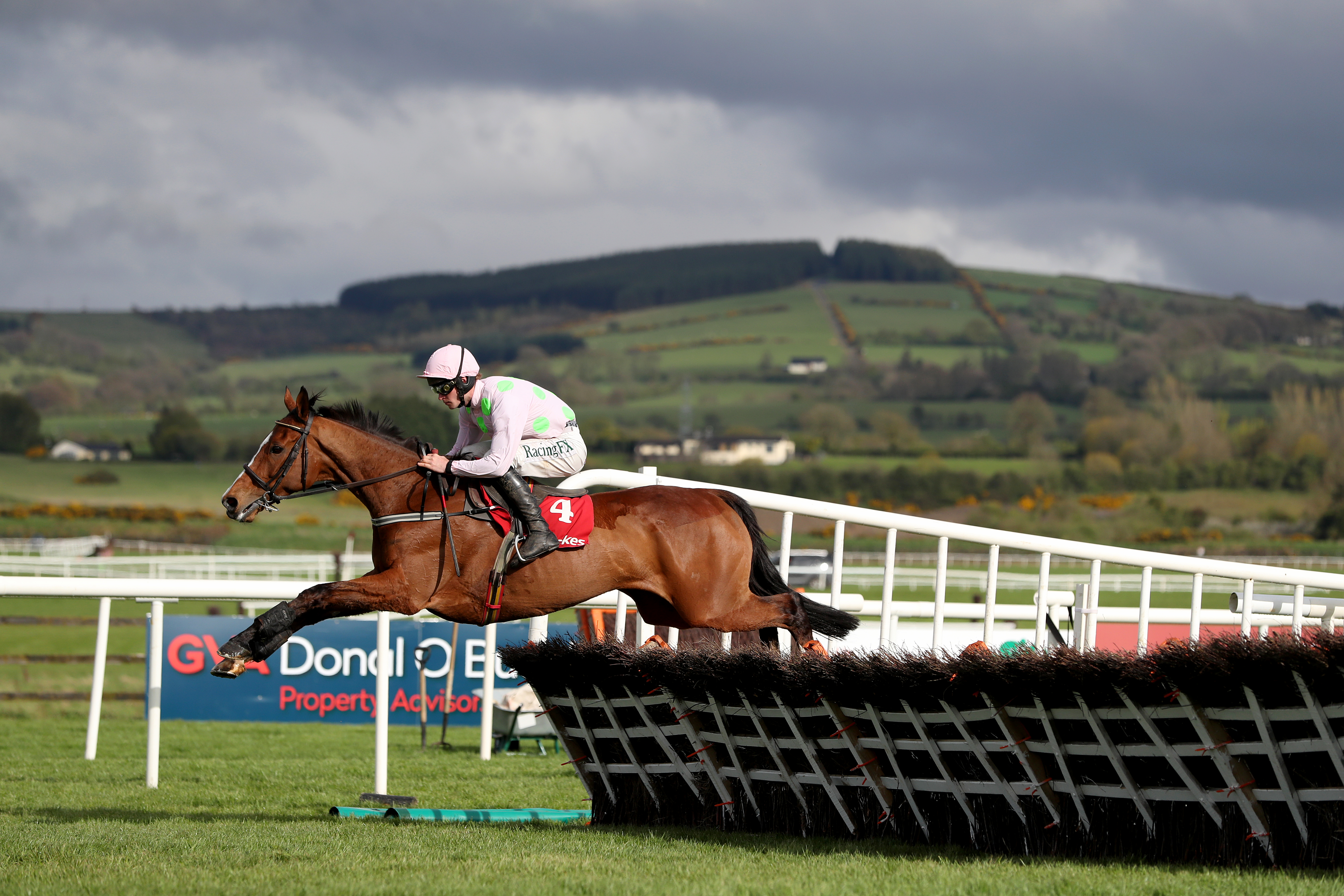 Faugheen looked majestic at Punchestown in April