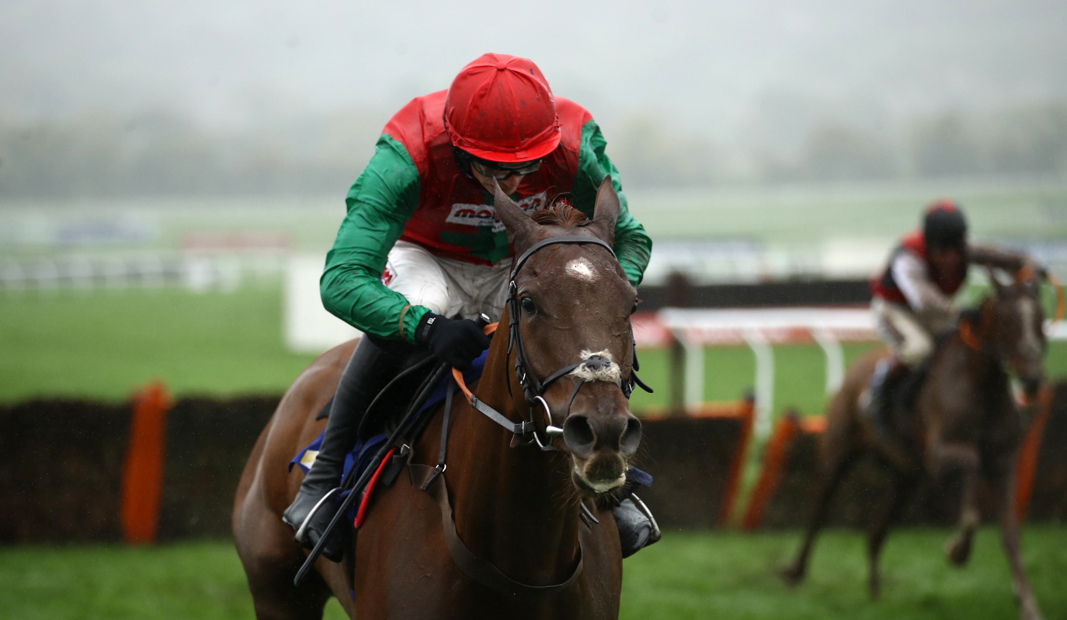 Quel Destin is again expected to go well at Cheltenham