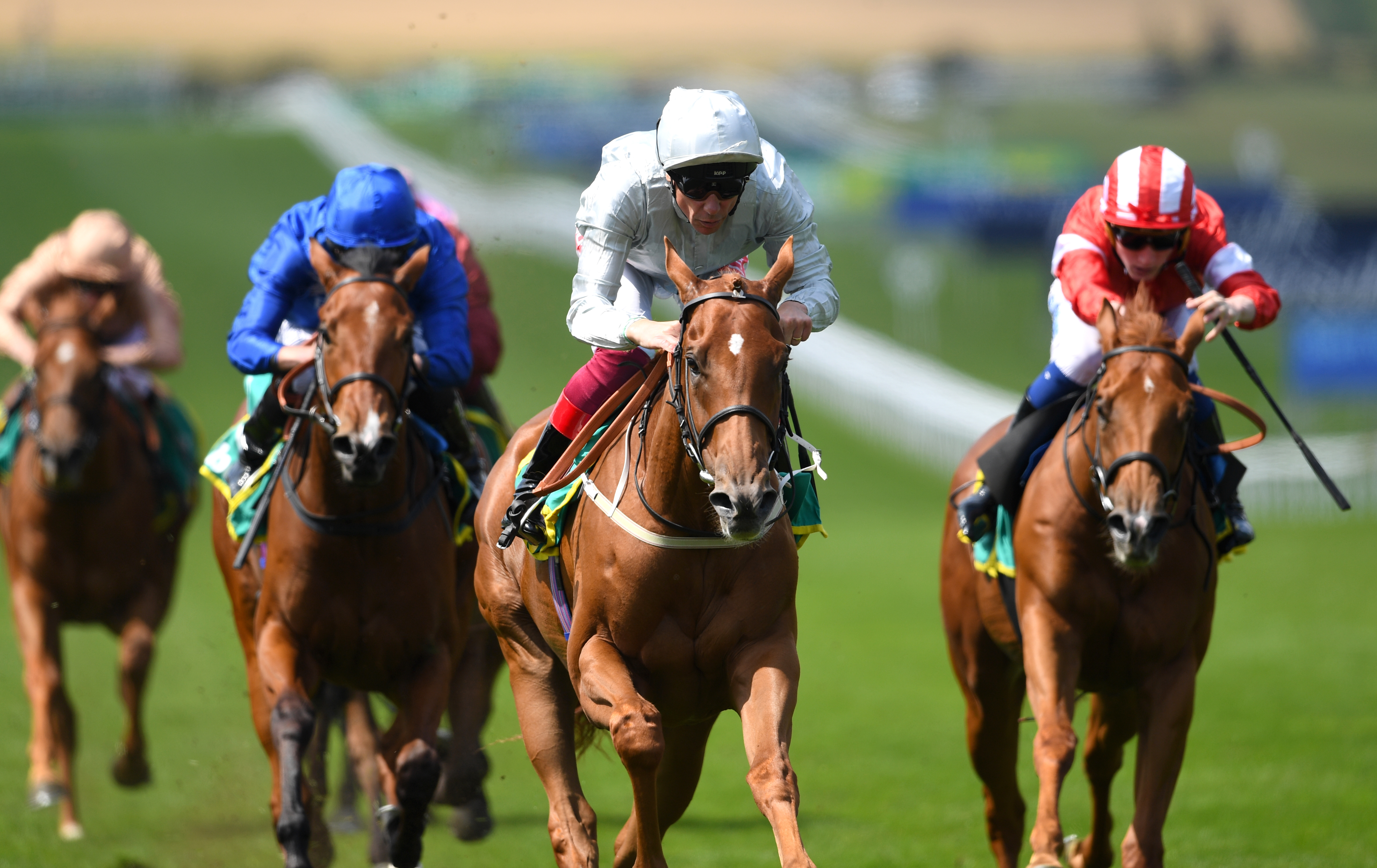Final Song (blue cap) has performed well in defeat on her last two starts
