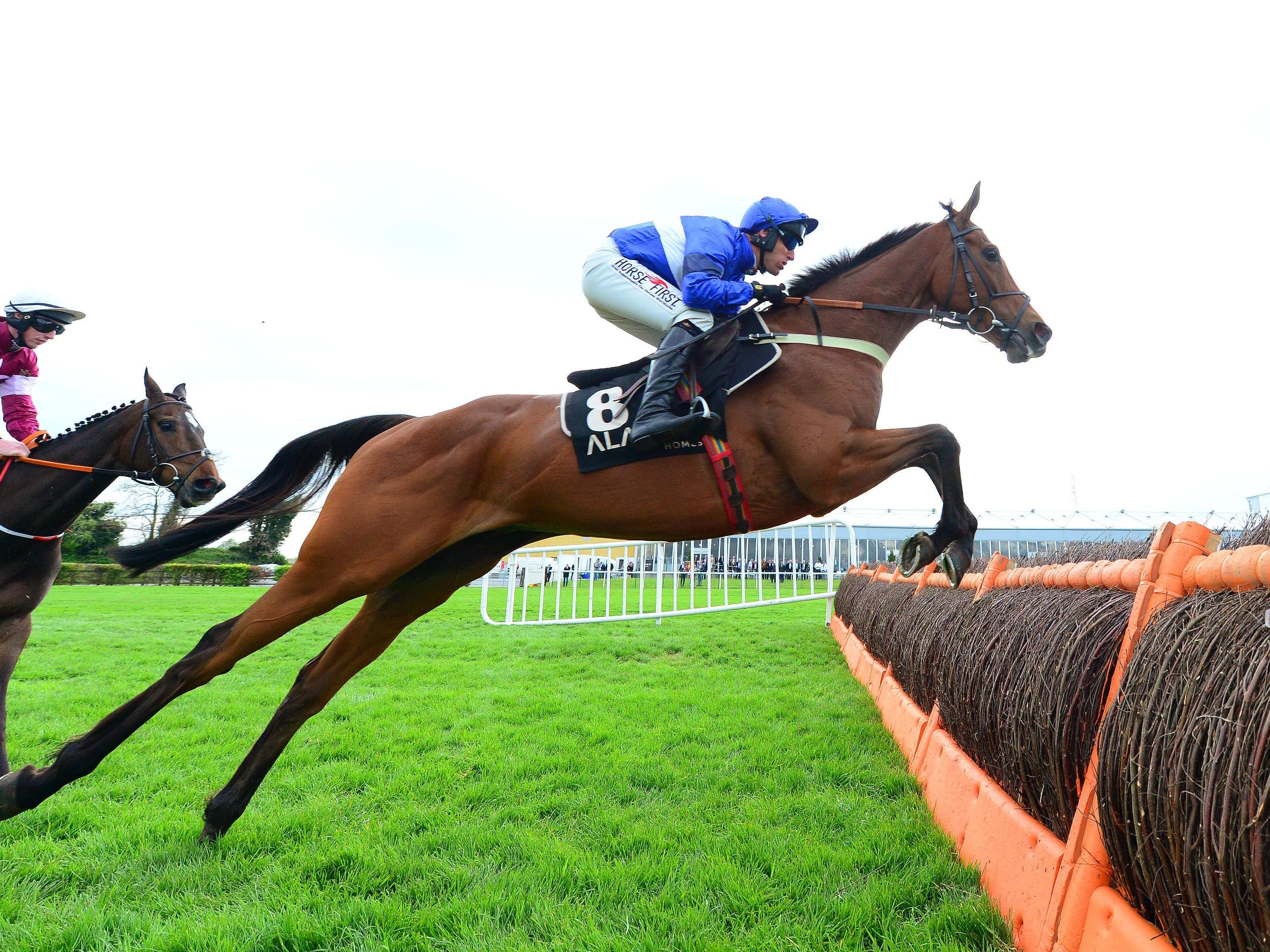 Reserve Tank on his way to winning at Punchestown (PA)