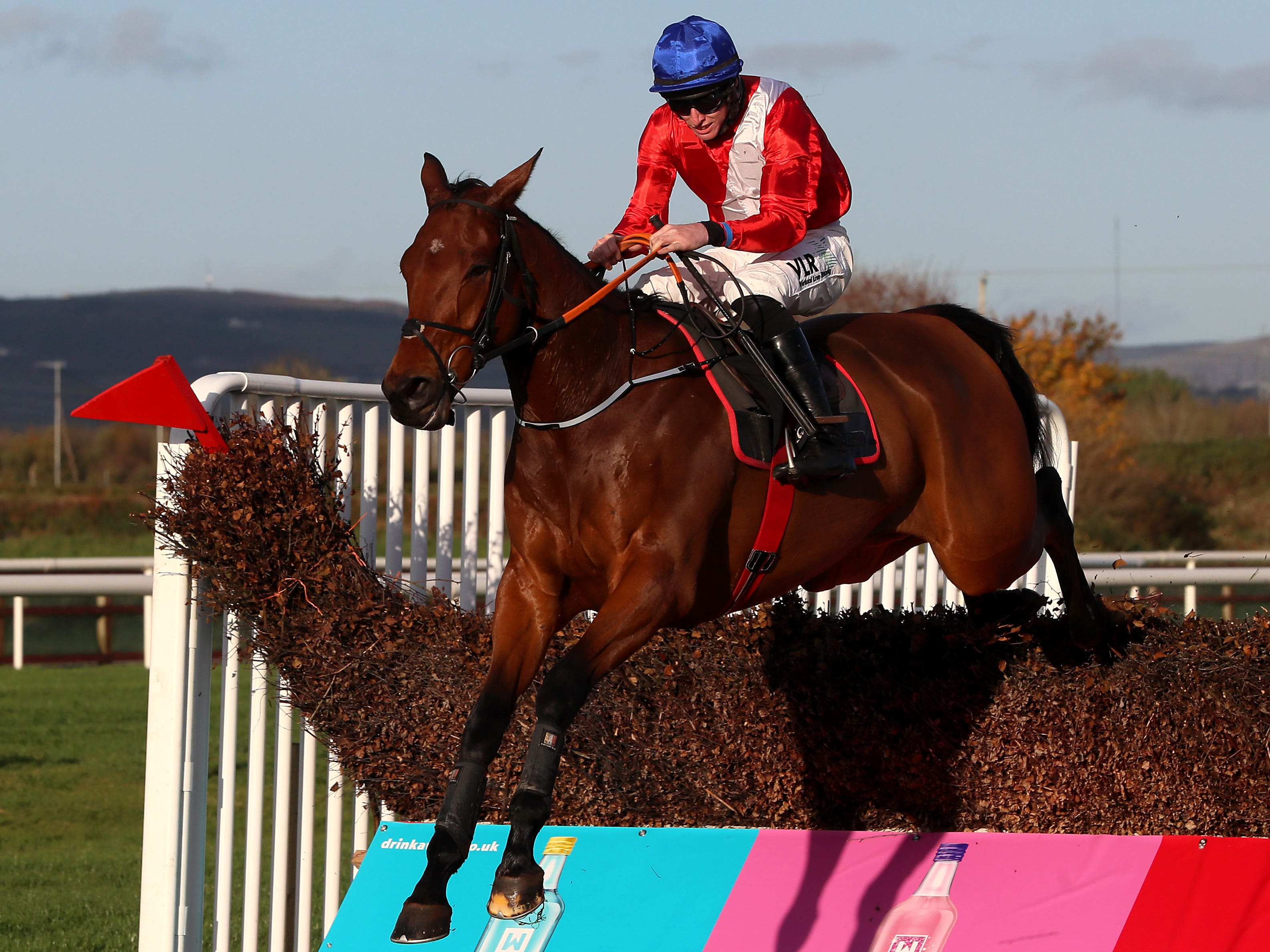 Envoi Allen is set to be the star attraction at Punchestown on Sunday (Brian Lawless/PA)