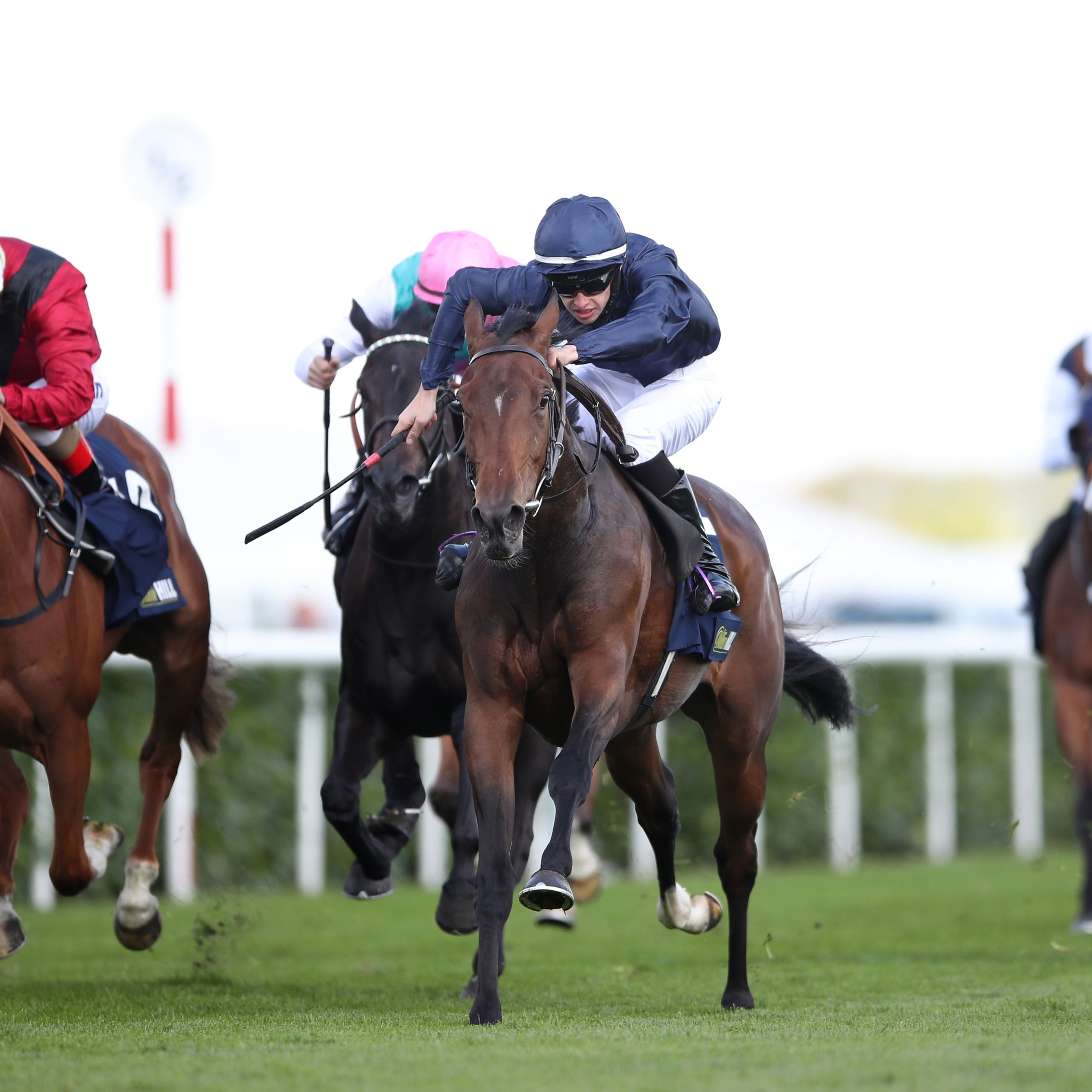 Fleeting (centre) has been added to the Ribblesdale Stakes