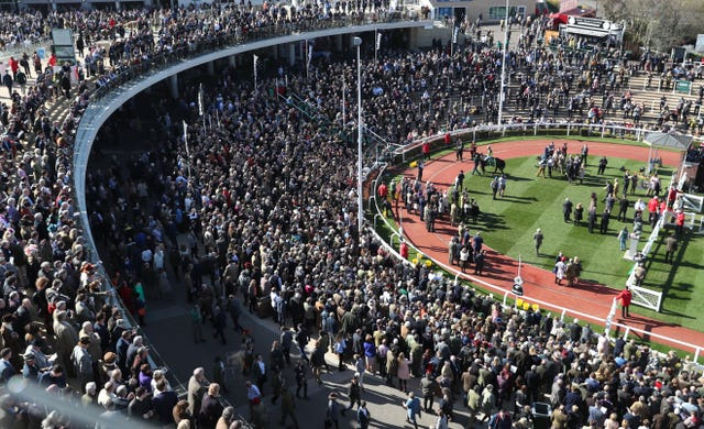 Packed scenes around the winner's enclosure following Willoughby Court's Cheltenham Festival win