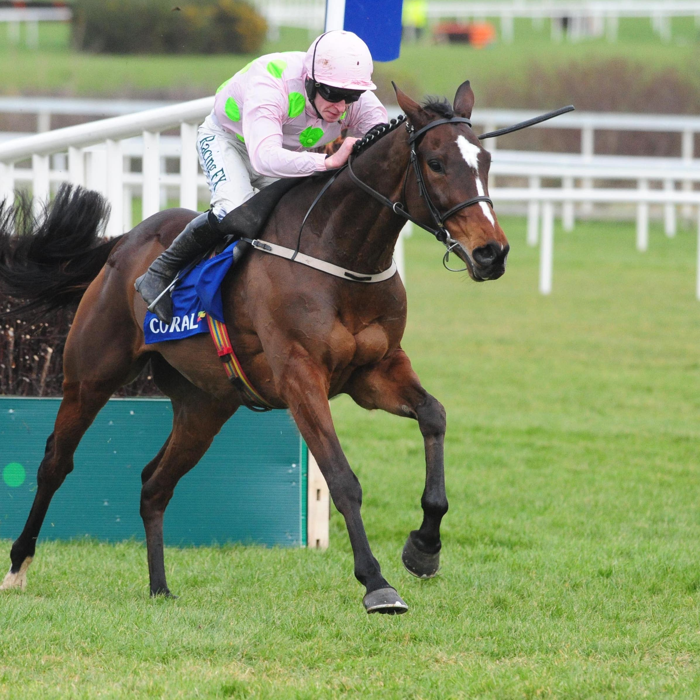Min is one of 13 possible runners for Willie Mullins in the Ryanair Chase
