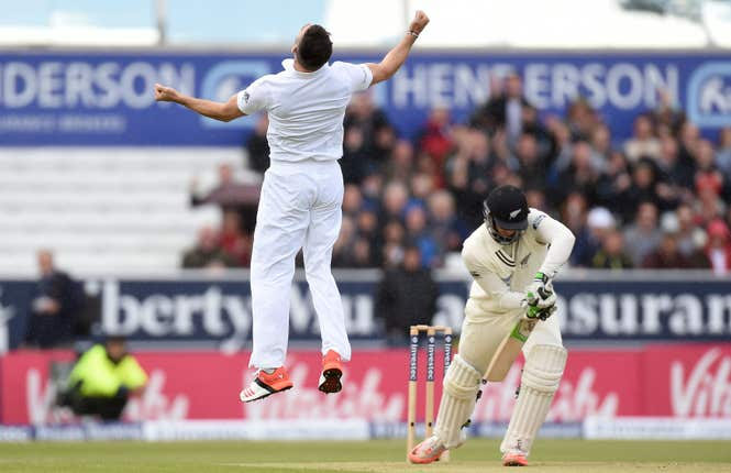 Anderson celebrates his dismissal of Guptill.