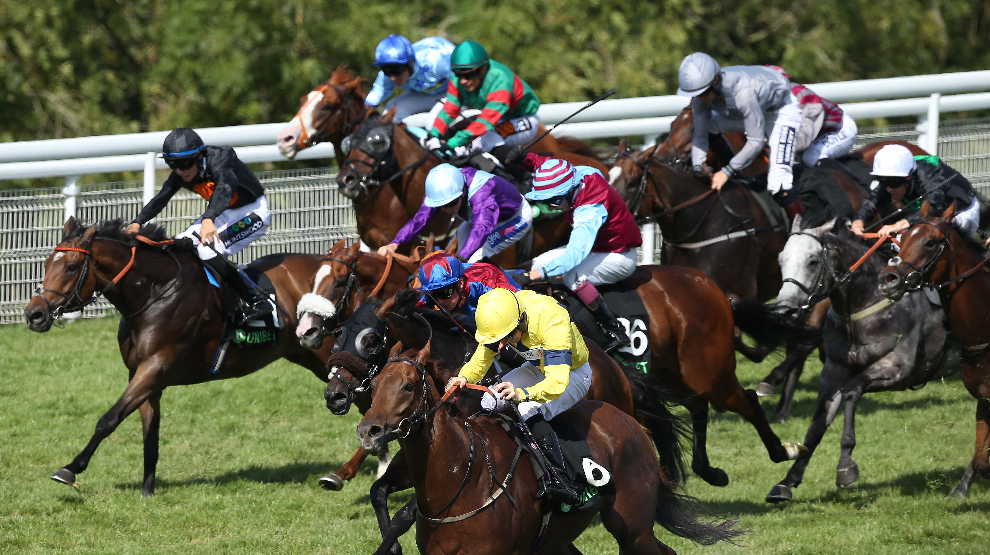 Justanotherbottle (yellow) was reeled in by Gifted Master in the Stewards' Cup
