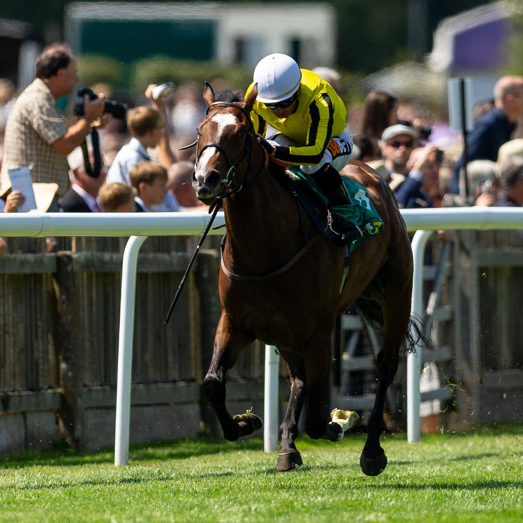 Pretty Pollyanna heads to France this weekend