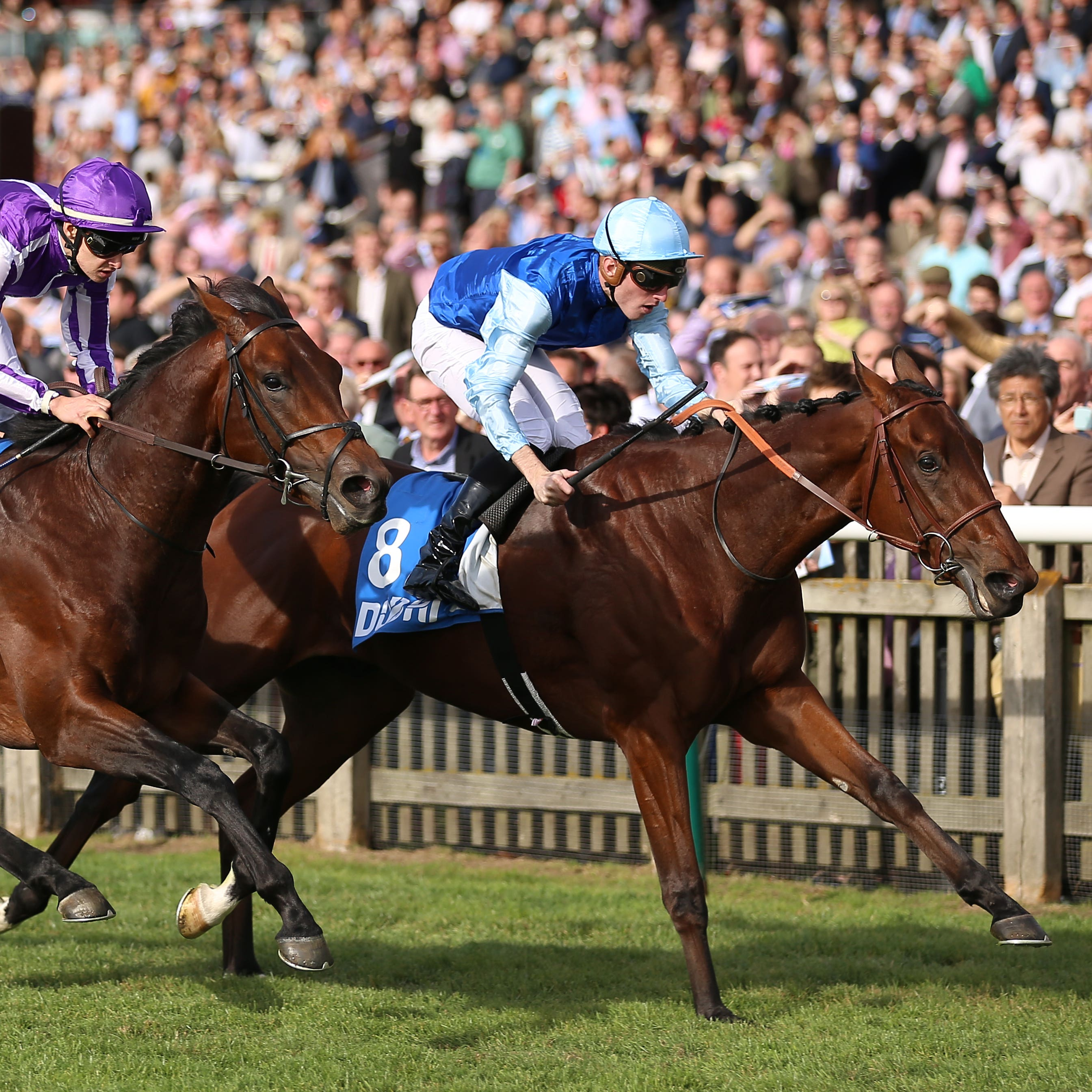 Persian King (right) holds Magna Grecia to win at Newmarket