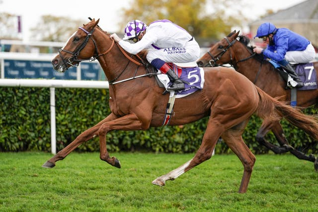Mac Swiney relished the stamina test and will be aimed at the Derby