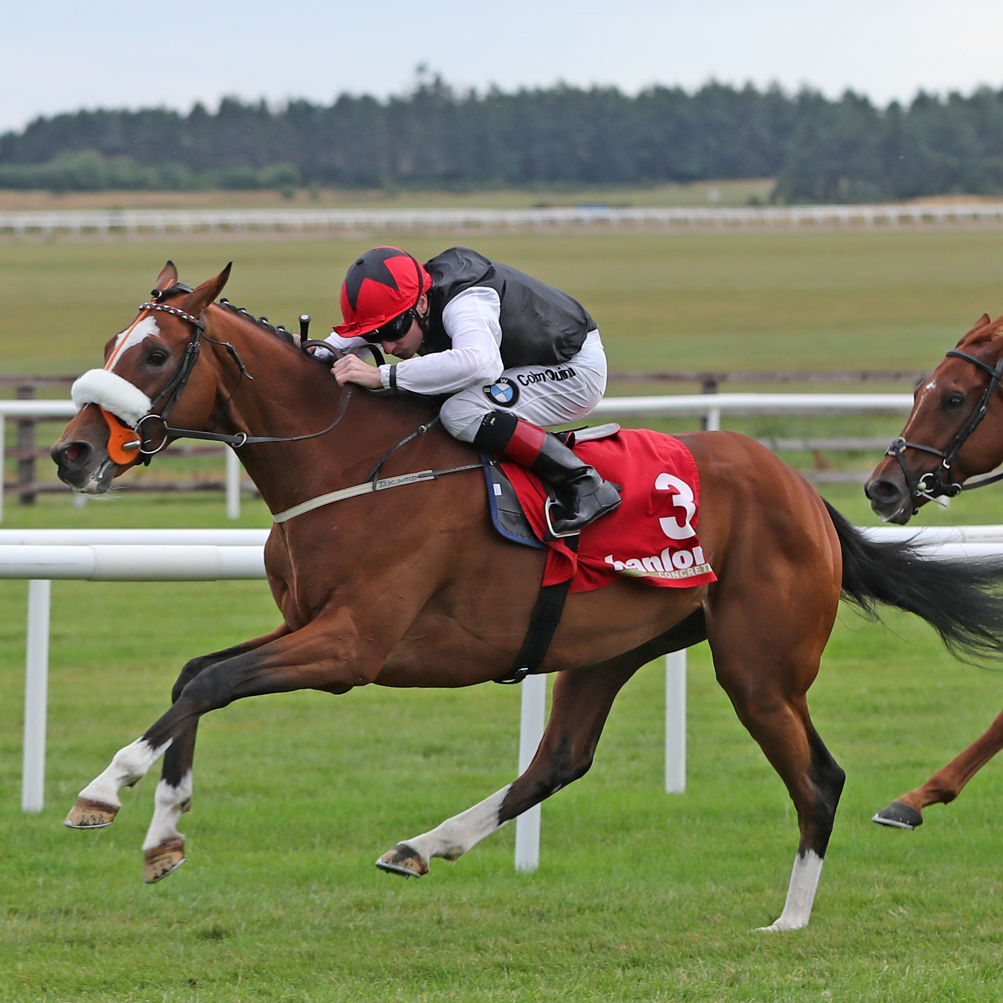 Falcon Eight wins at the Curragh