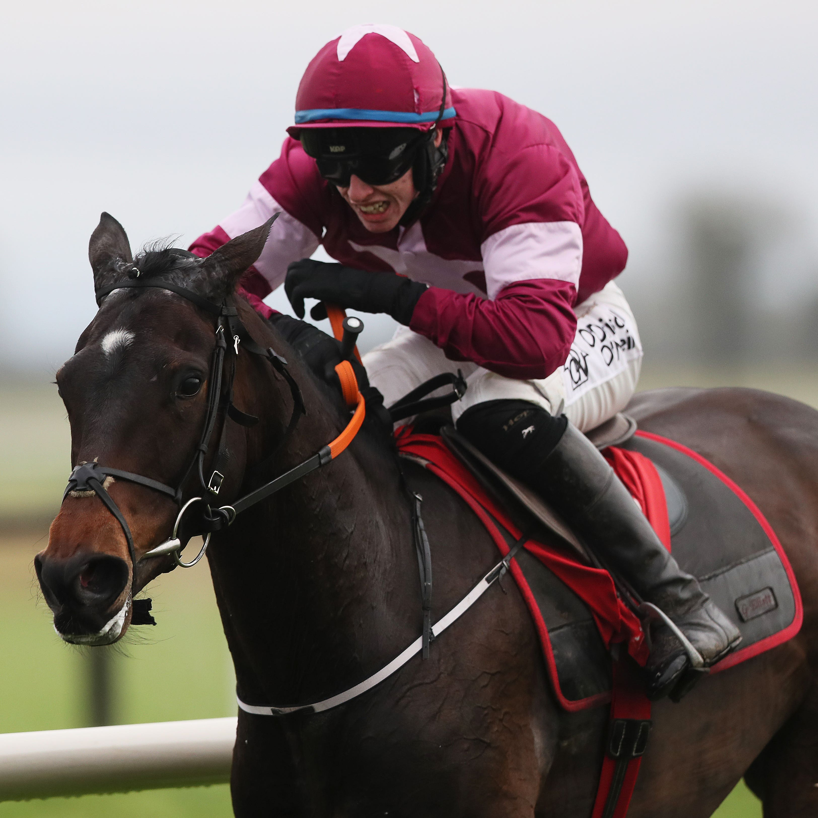Apple's Jade will bid for a third victory in the Hatton's Grace Hurdle at Fairyhouse