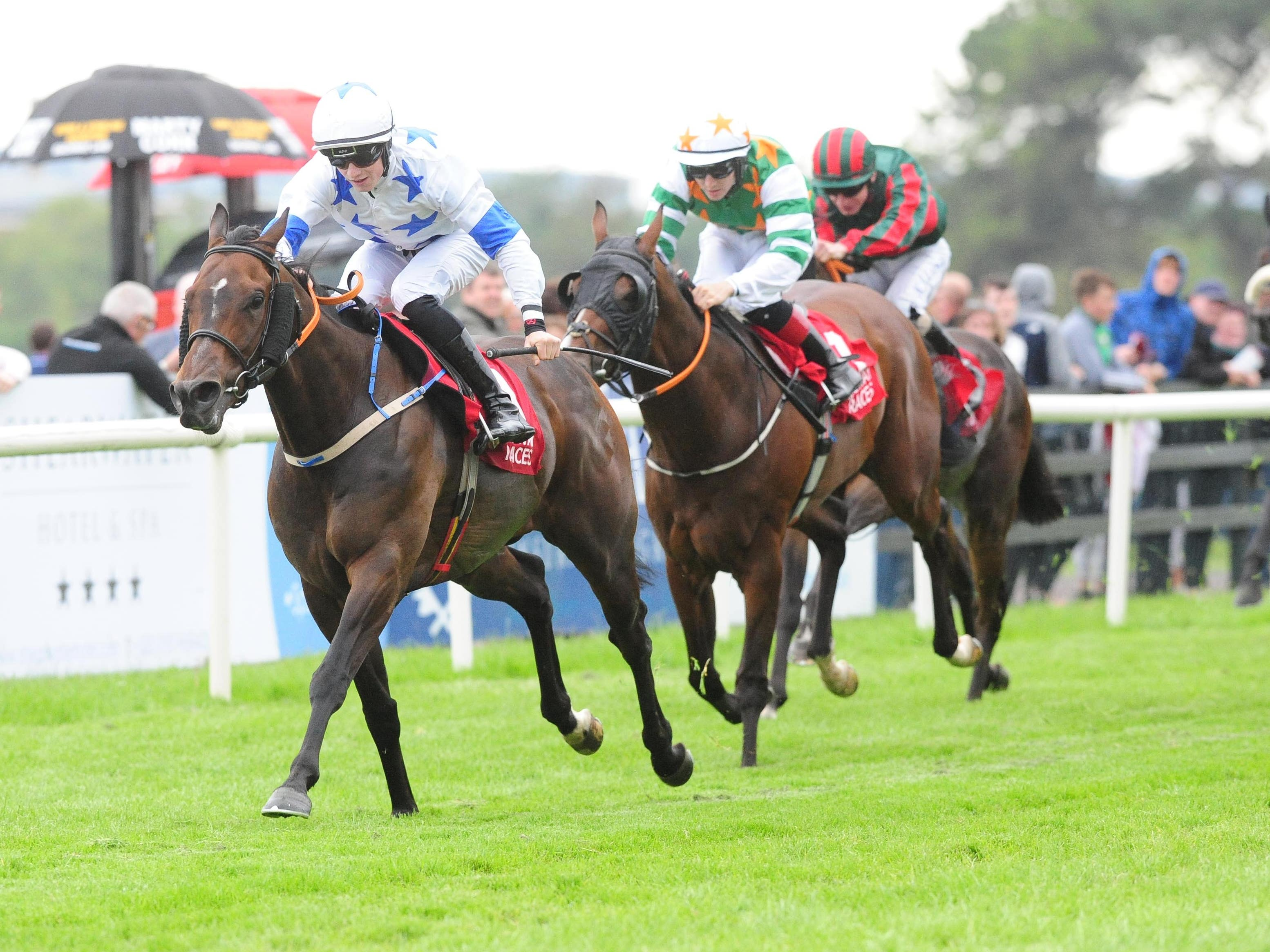 Make A Challenge could run at Naas next month (PA)