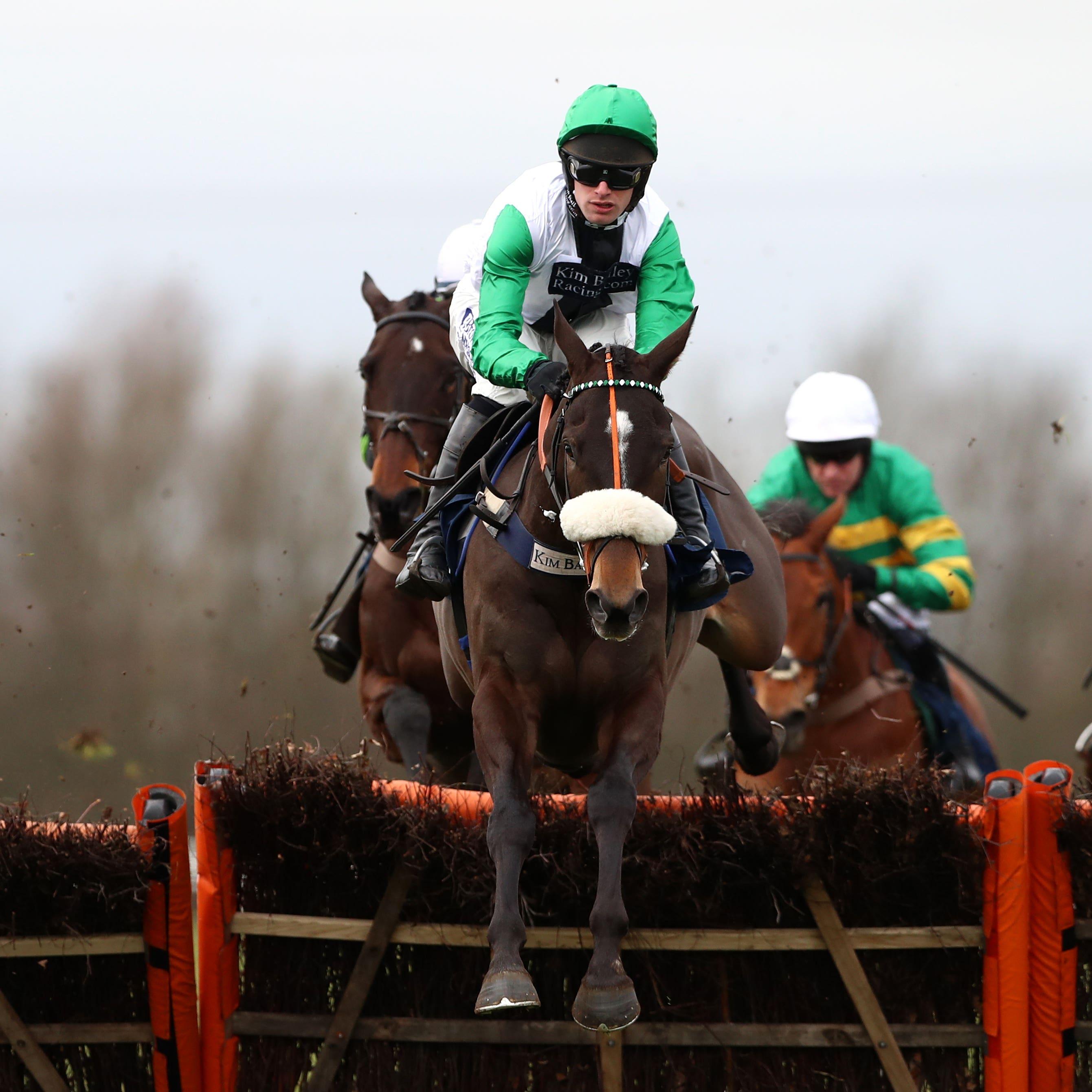 Vinndication made a winning chasing debut