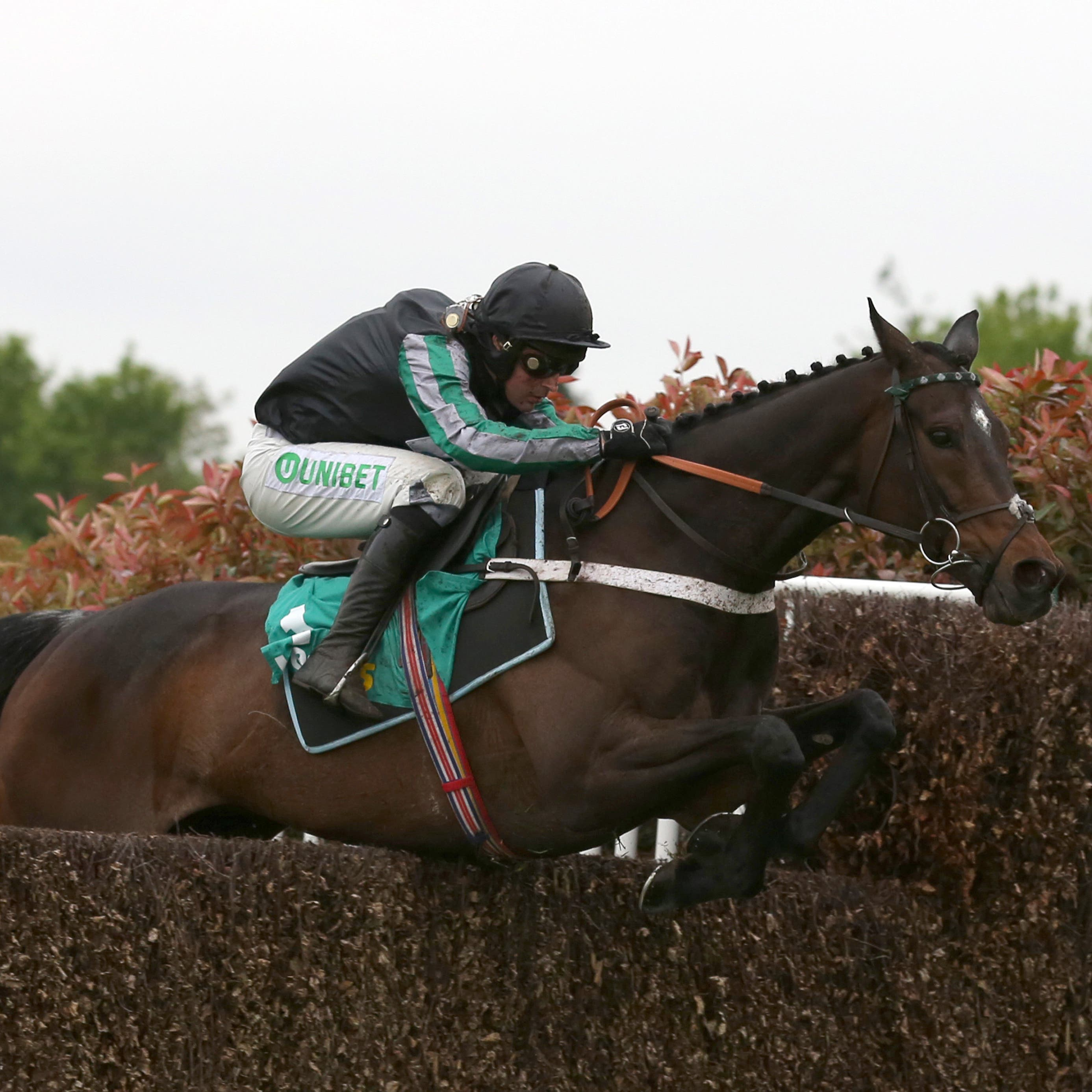 Altior will have just the three rivals in the Tingle Creek Chase at Sandown