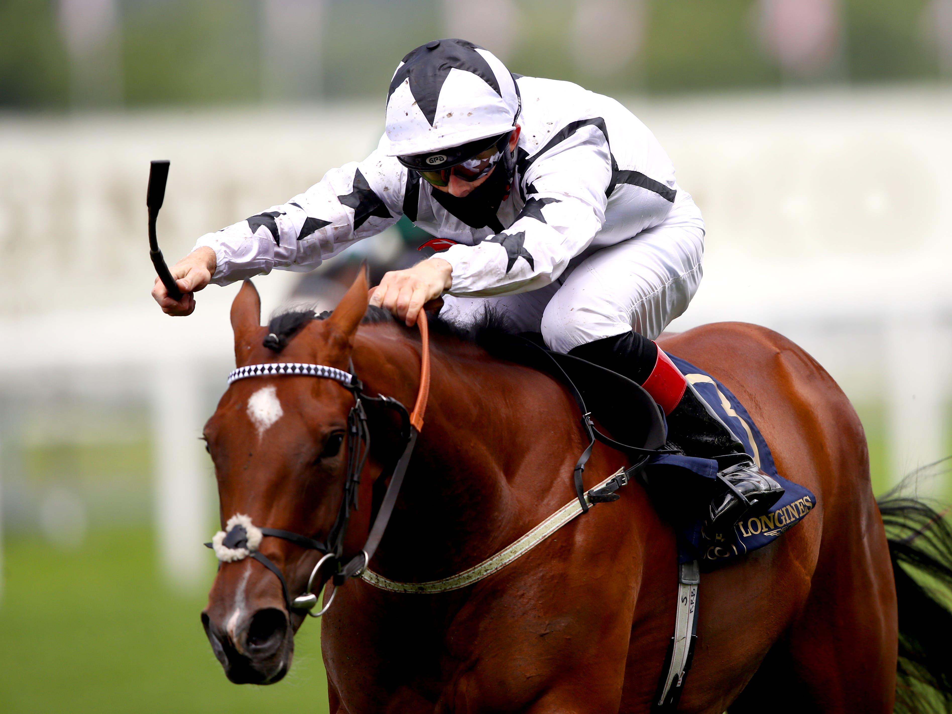 Dandalla is set to head for the Prix de l'Abbaye after returning to winning form at Ayr (Julian Finney/pa)