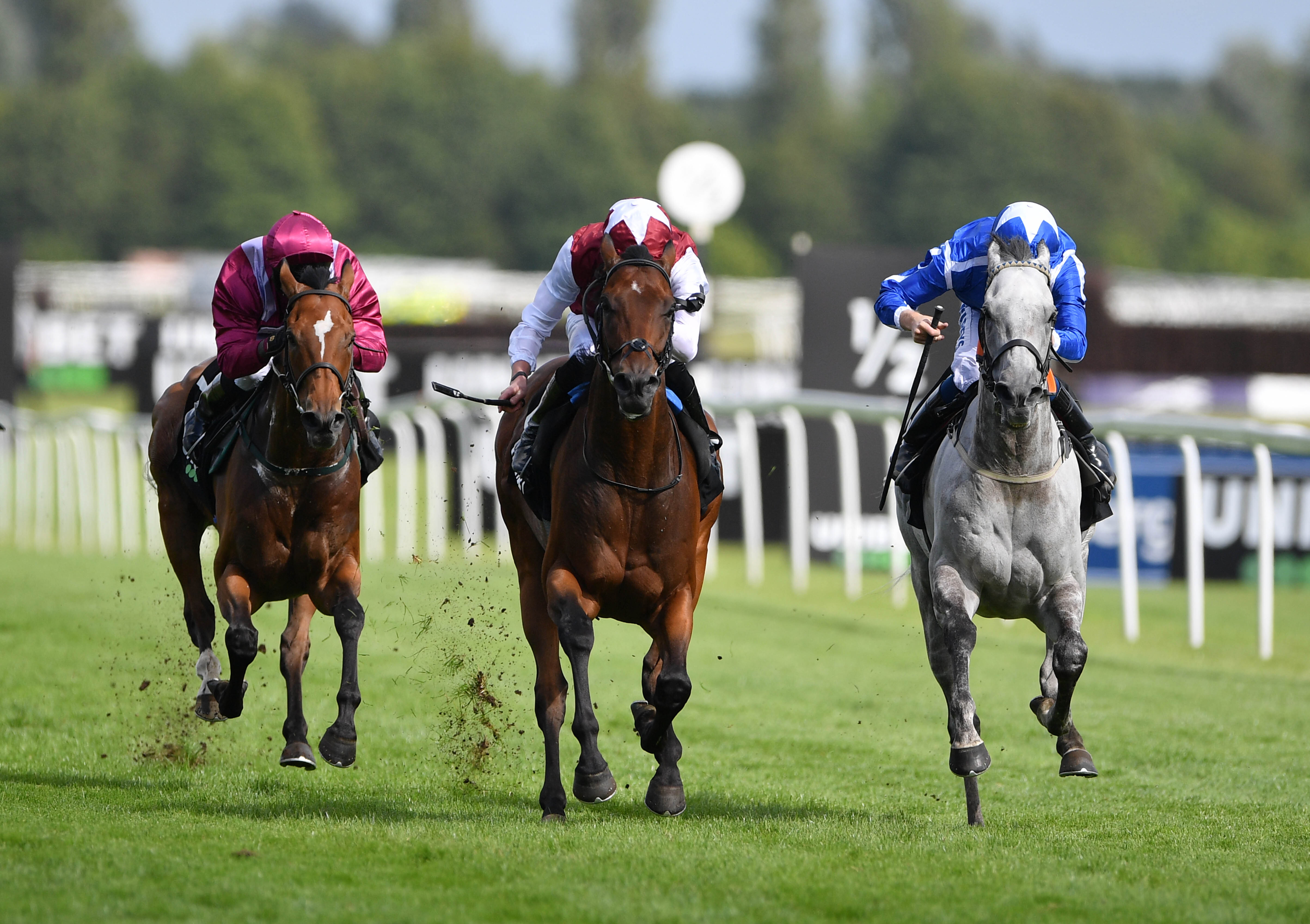 Glorious Journey (left) beat Librisa Breeze in the Hungerford Stakes