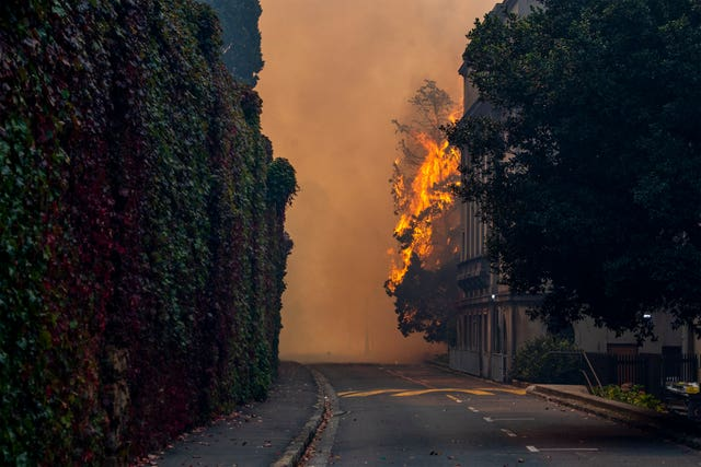 A building burns on the campus of the University of Cape, South Africa