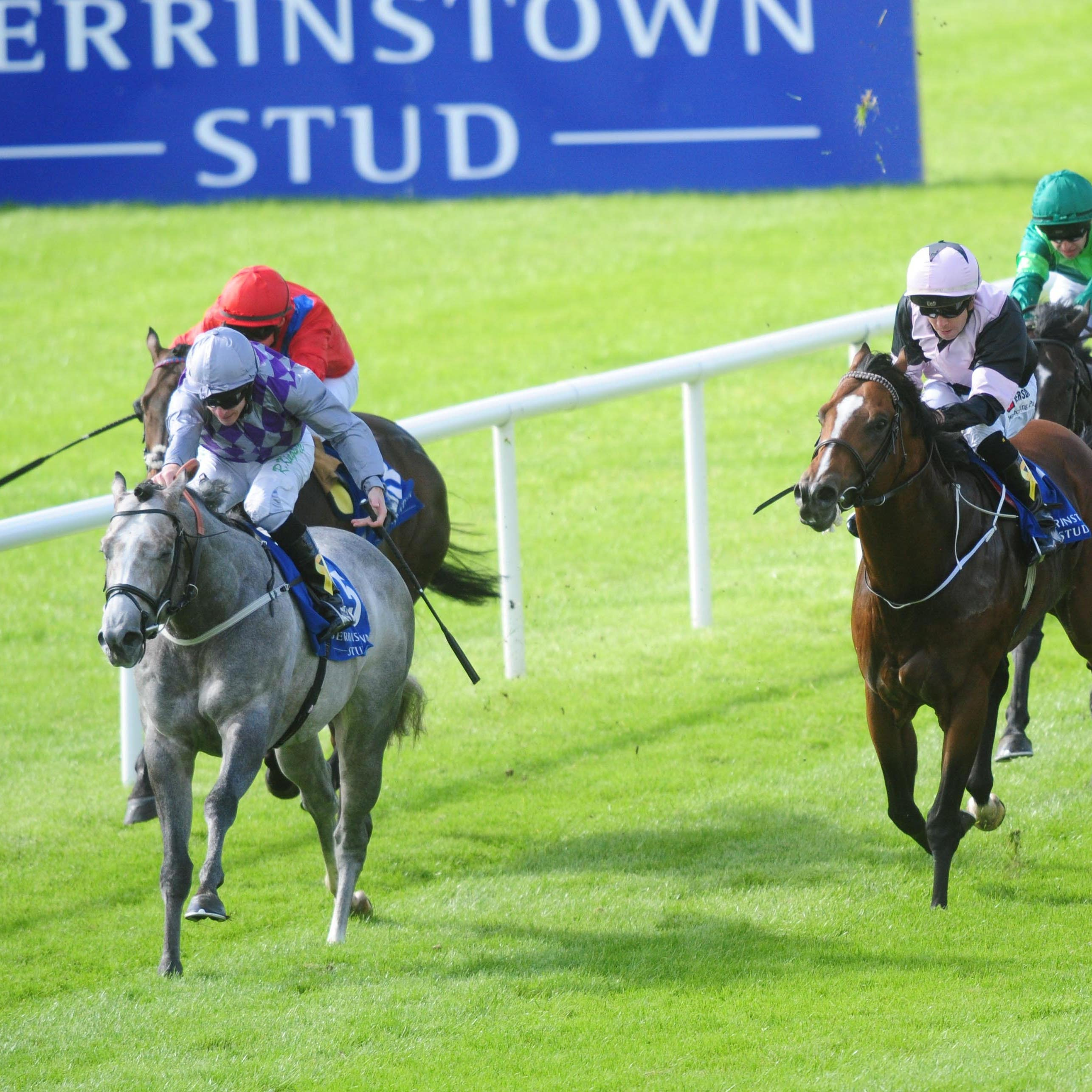 Havana Grey wins the Flying Five at the Curragh