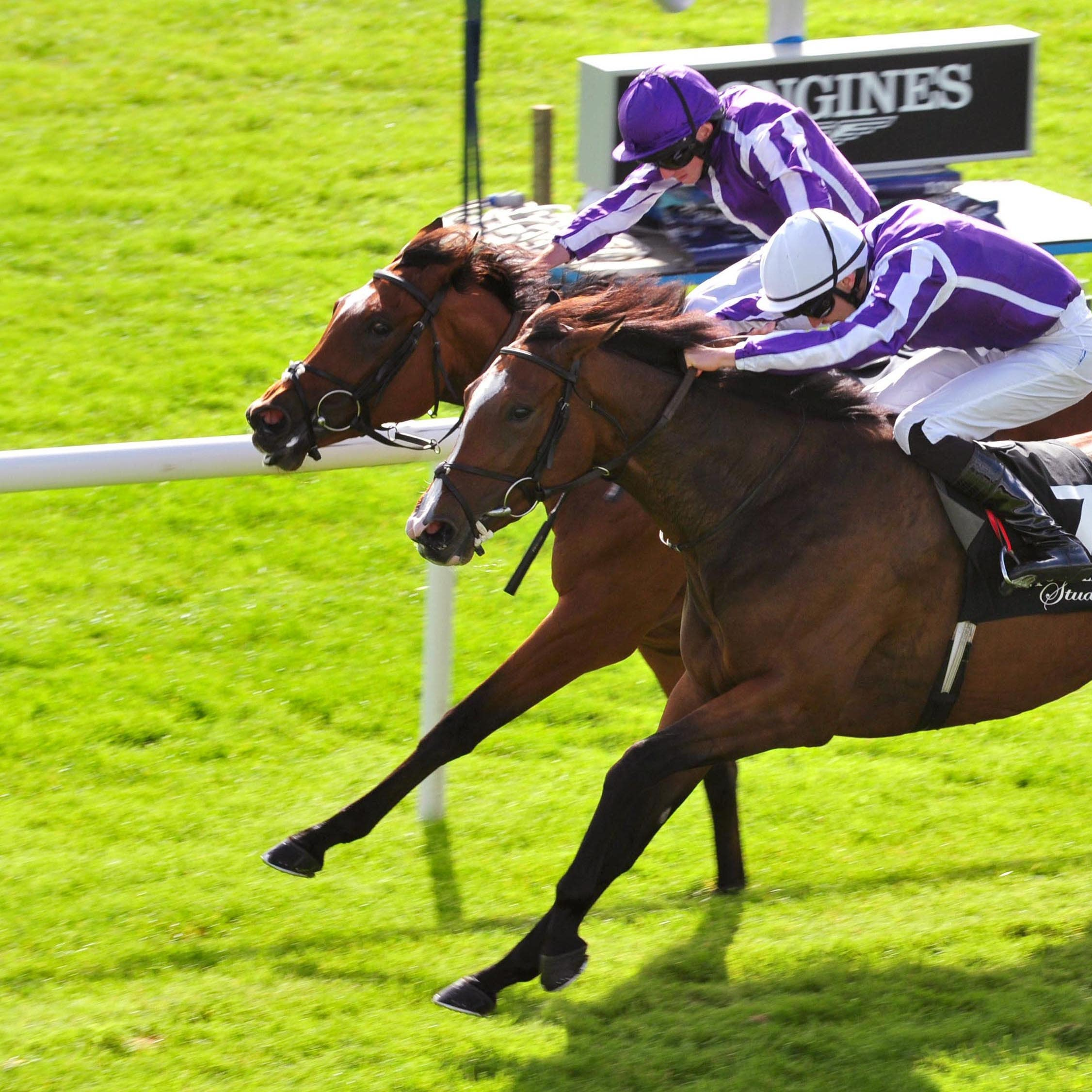 Happily (white cap) gets up to win the Moyglare Stud Stakes at the Curragh