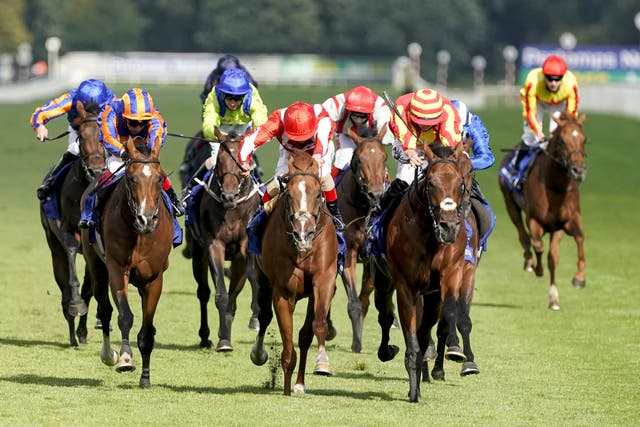 Berkshire Rocco (red cap) went down fighting in the St Leger