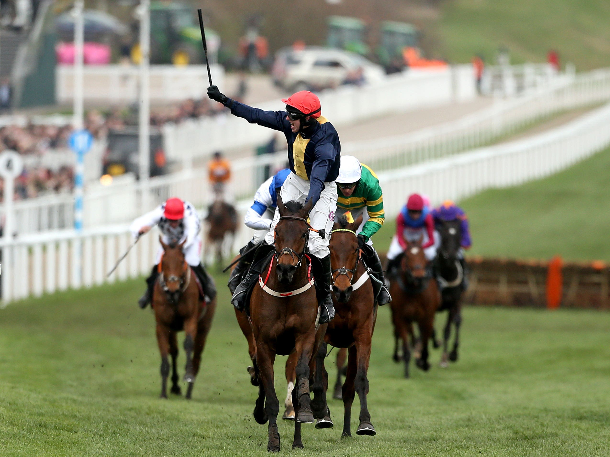 City Island wins the Ballymore Novices' Hurdle at Cheltenham (Paul Harding/PA)