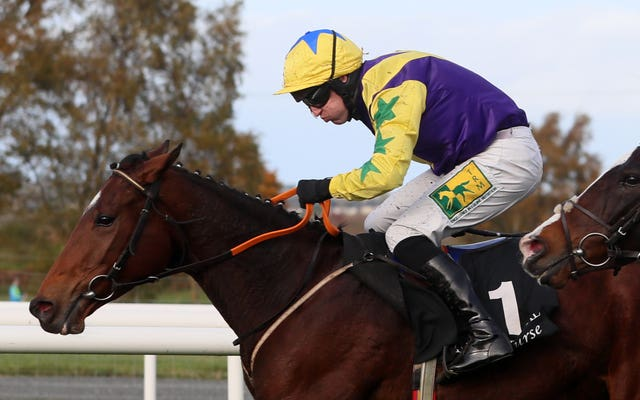 Skyace lunged late to claim Grade Three honours