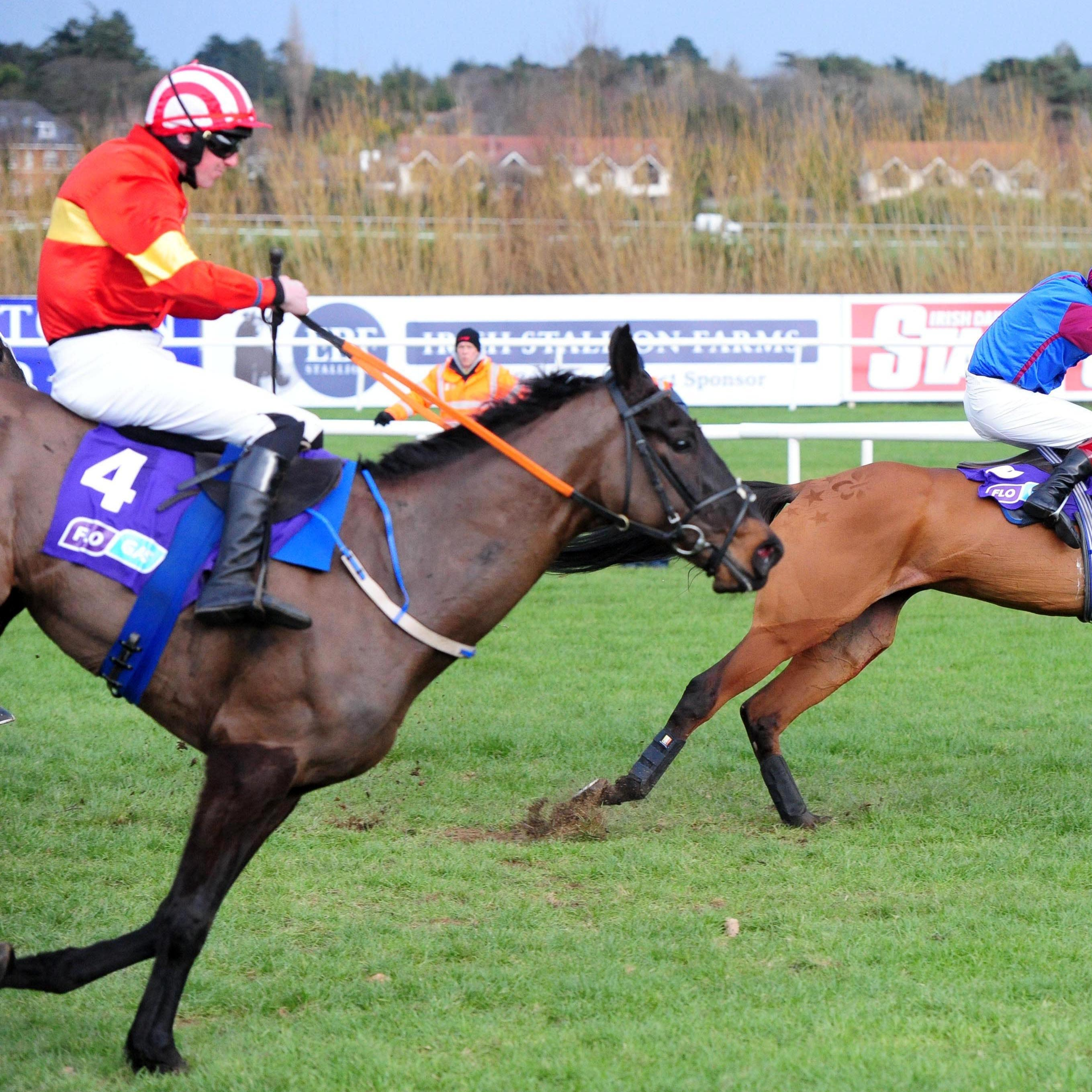Kaiser Black put it up to La Bague Au Roi in the Flogas Novice Chase