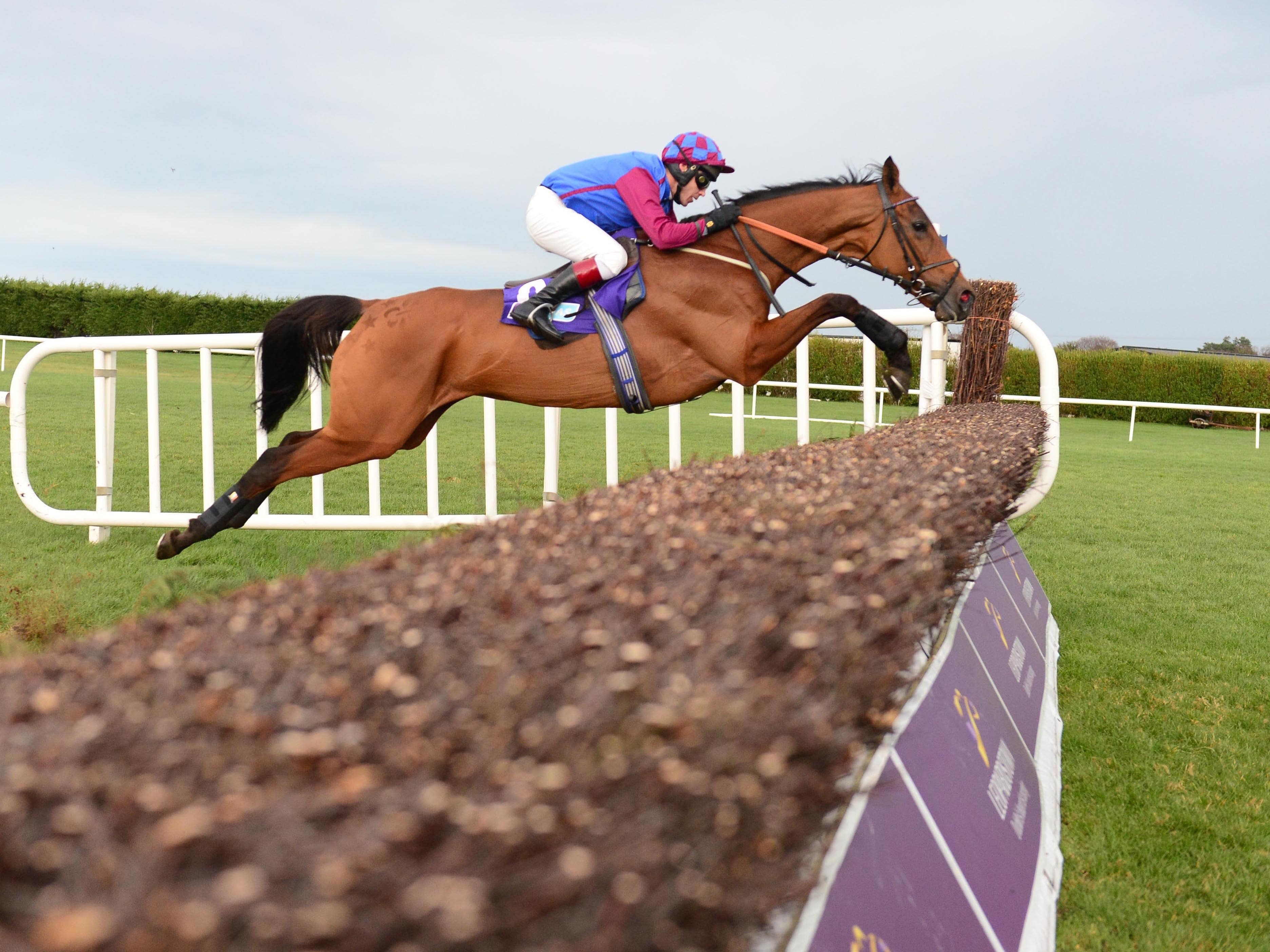La Bague Au Roi winning at Leopardstown (PA)