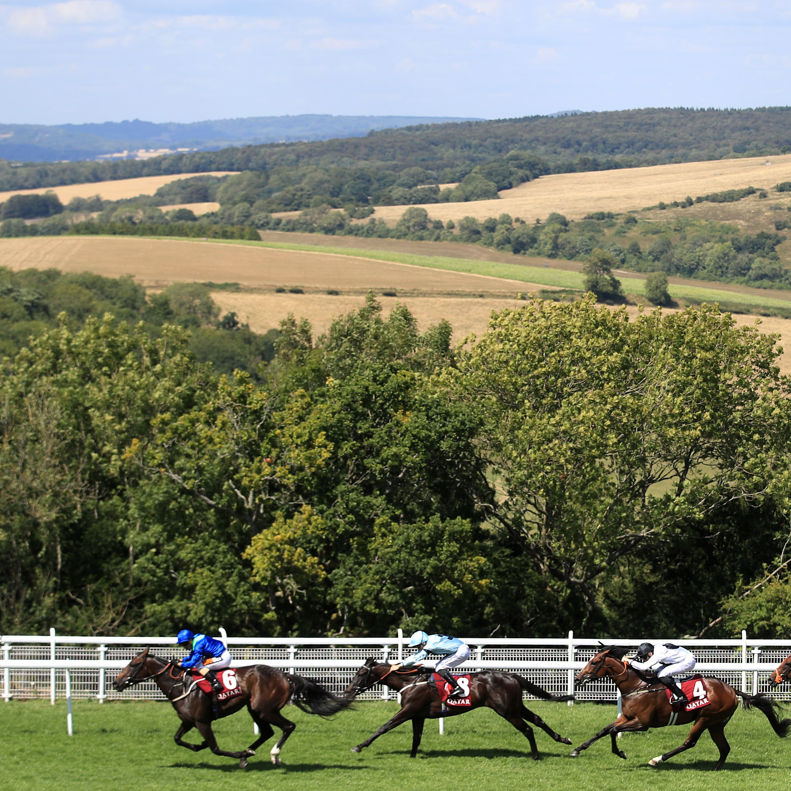 Connections of Dark Vision are hoping he can return to the level of form he showed at Goodwood