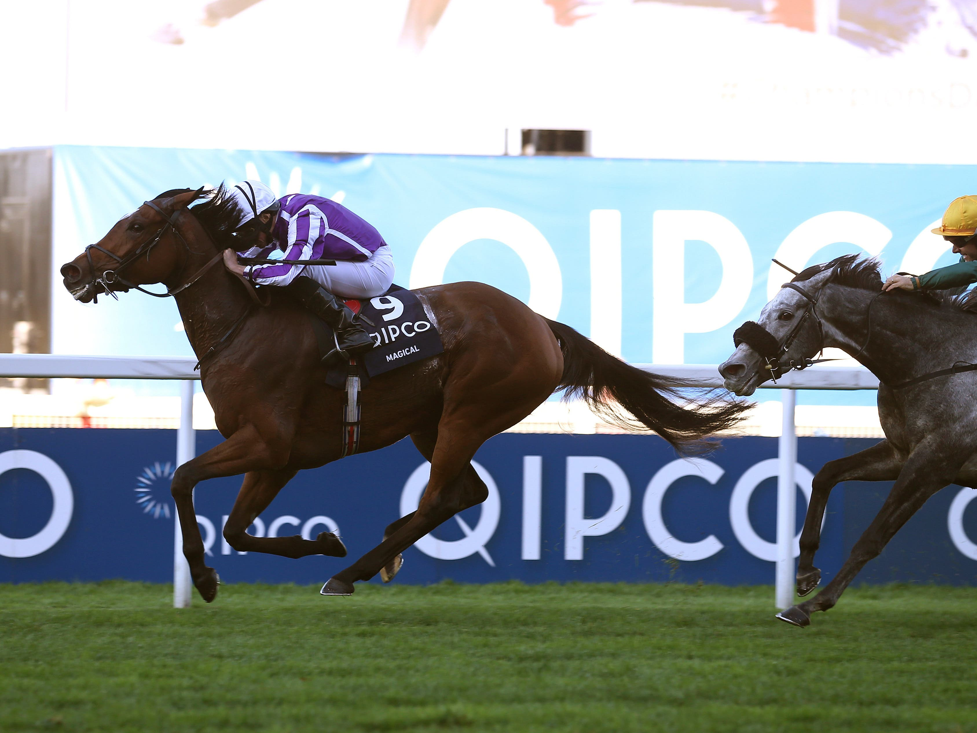 Magical is among a team of seven entered by trainer Aidan O'Brien for the Coronation Cup (Julian Herbert/PA)