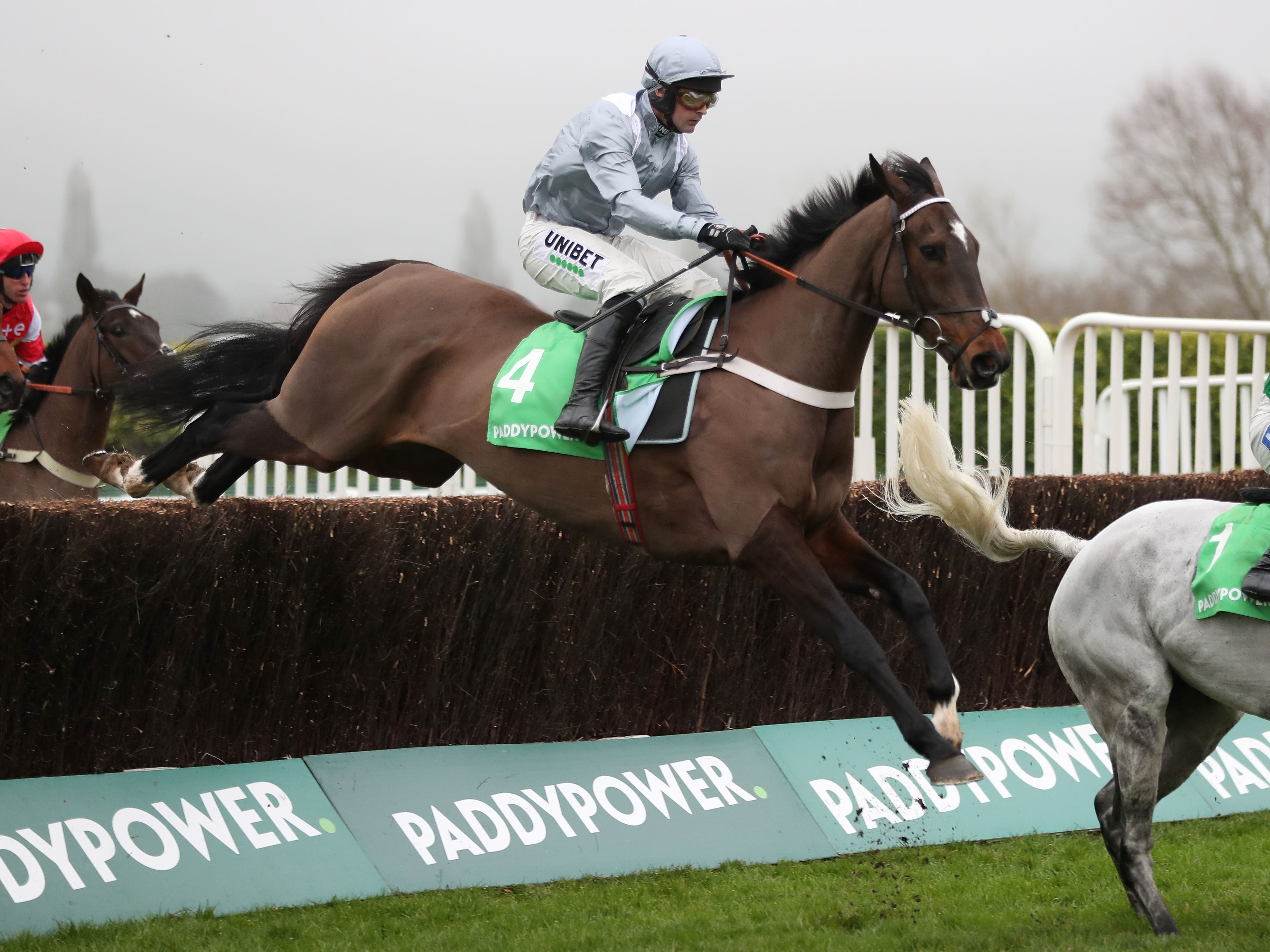 Santini on his way to Cotswold Chase glory (David Davies/PA)