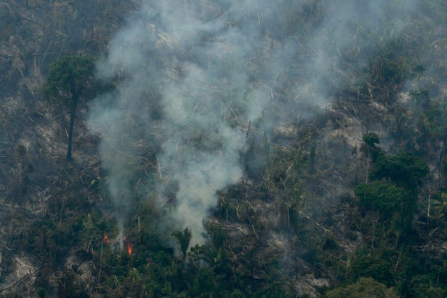 Fire consumes an area of Rondonia state in Brazil