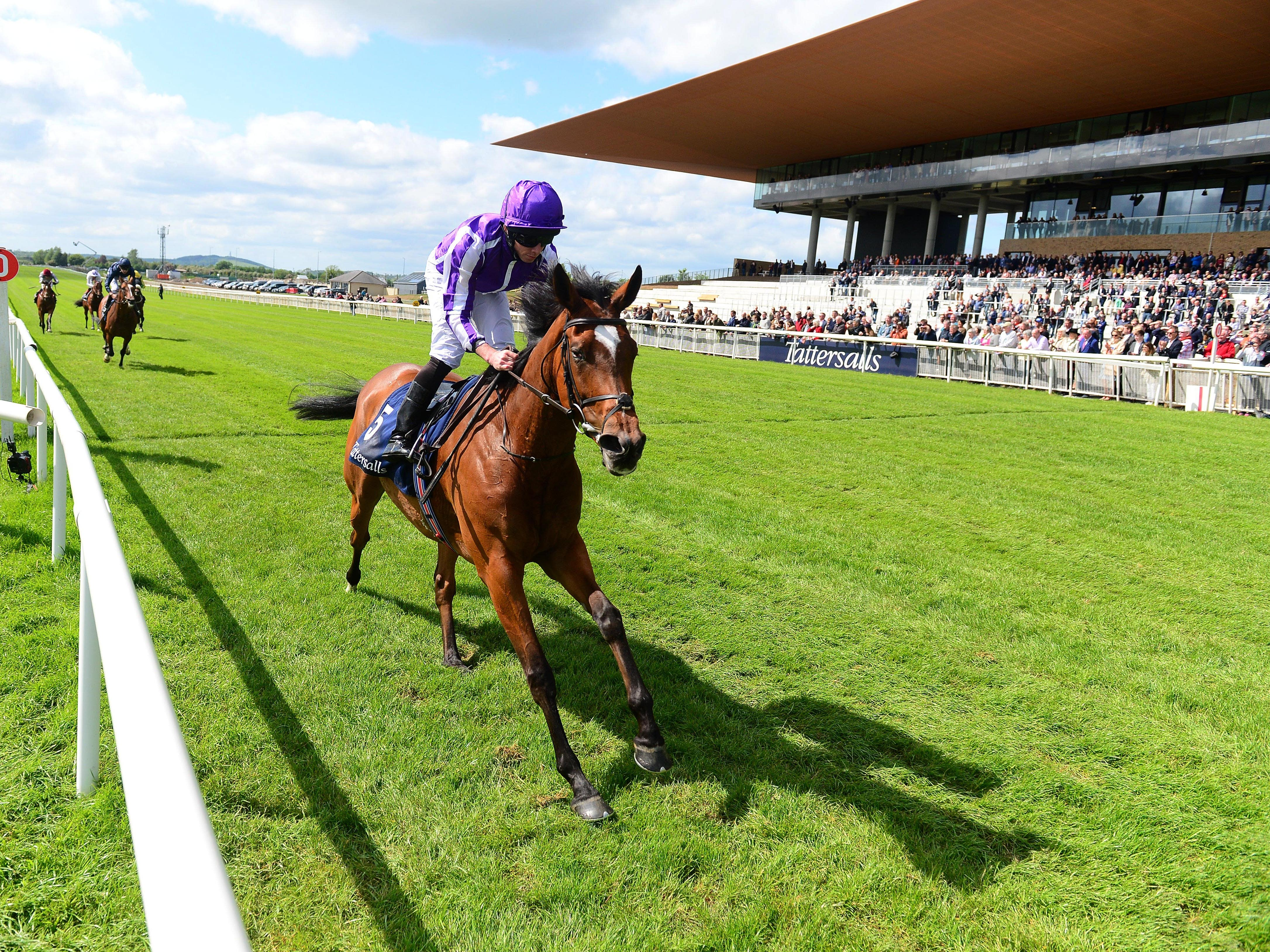 Magical won last year's Tattersalls Gold Cup (PA)