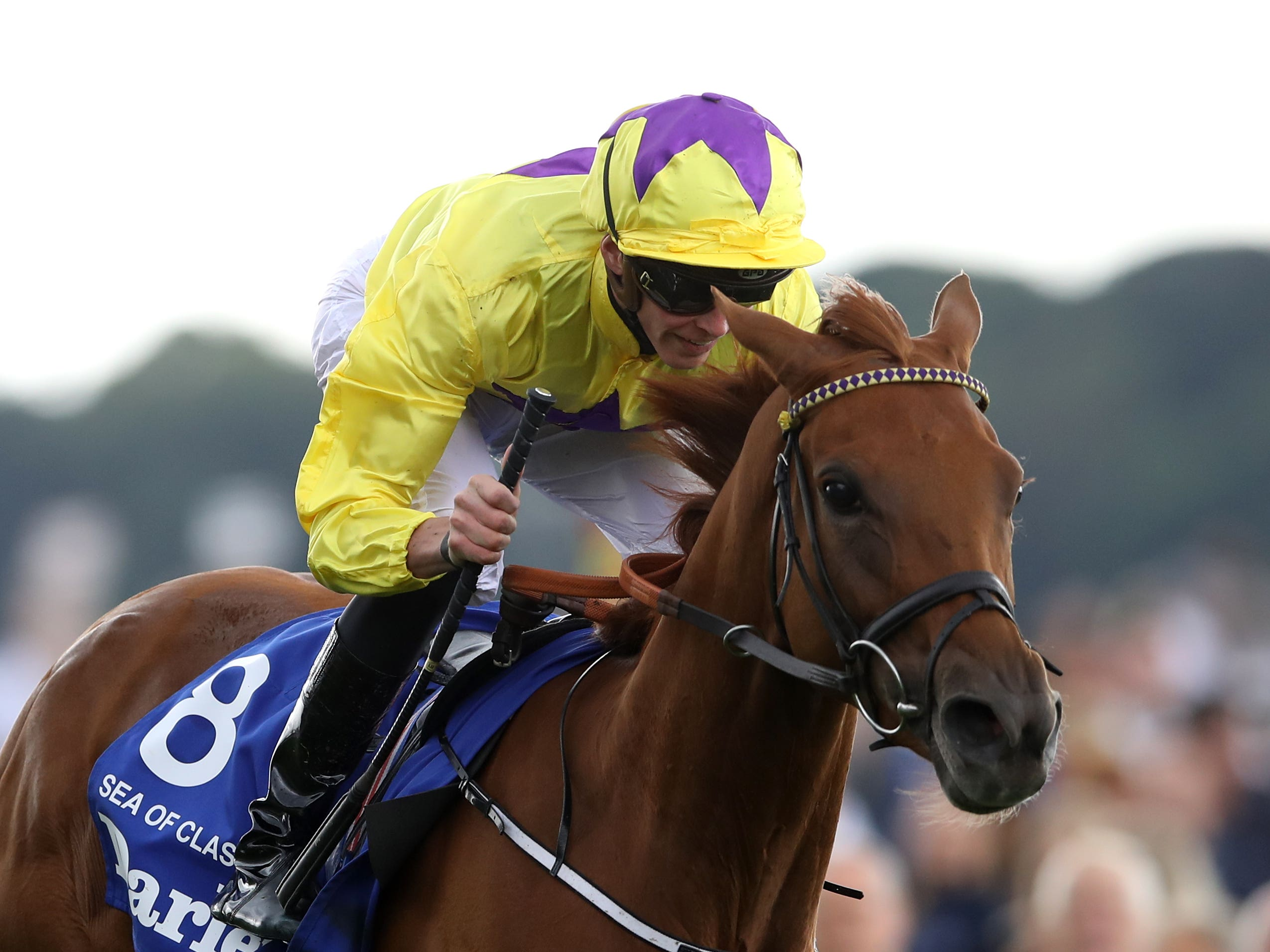 Sea Of Class remains critical but stable according to William Haggas (Tim Goode/PA)