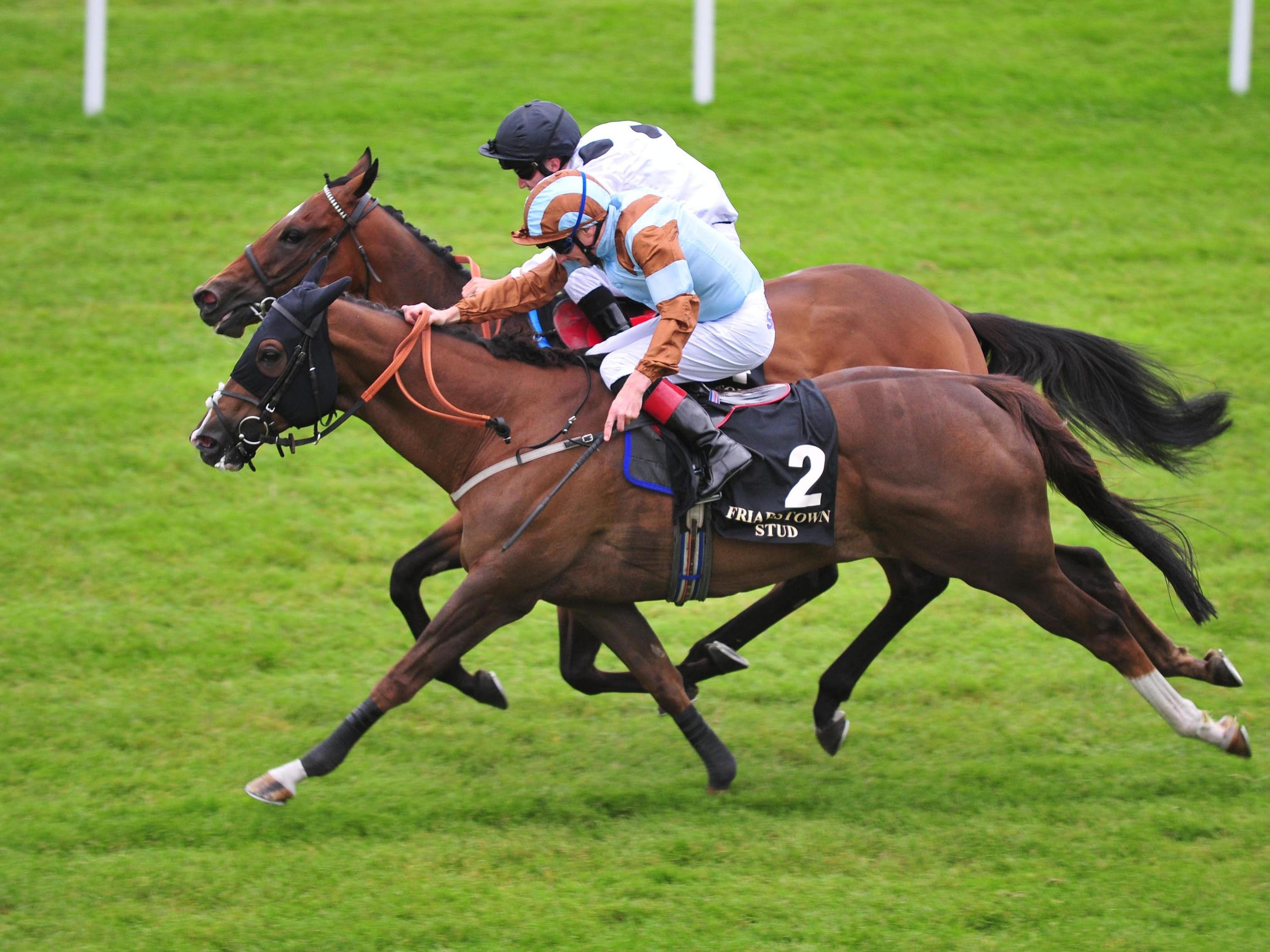 Caspian Prince (front) edges out Marsha in last year's Sapphire Stakes (PA)