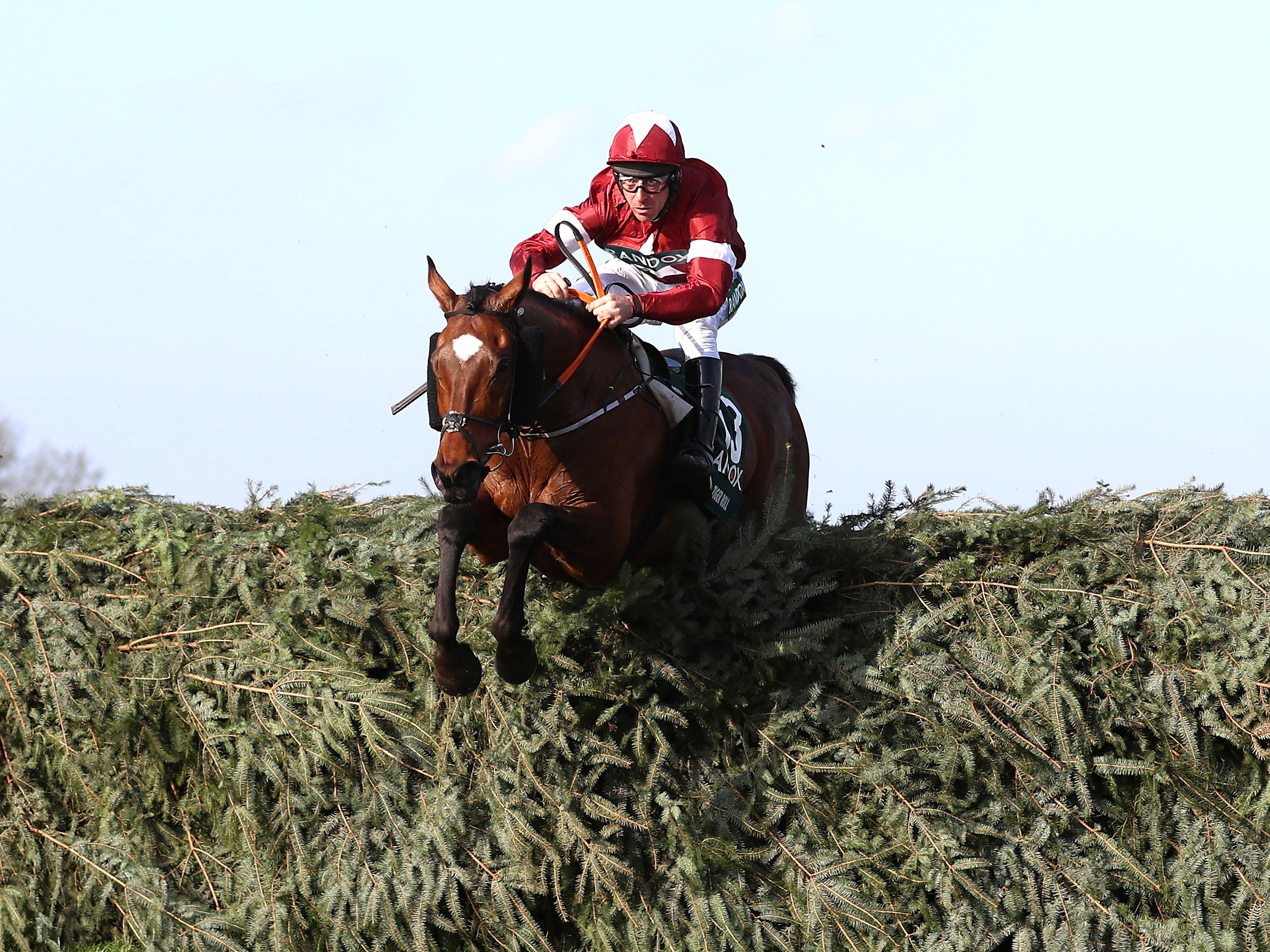 Tiger Roll has Cheltenham and Aintree in his sights again (Tim Goode/PA)