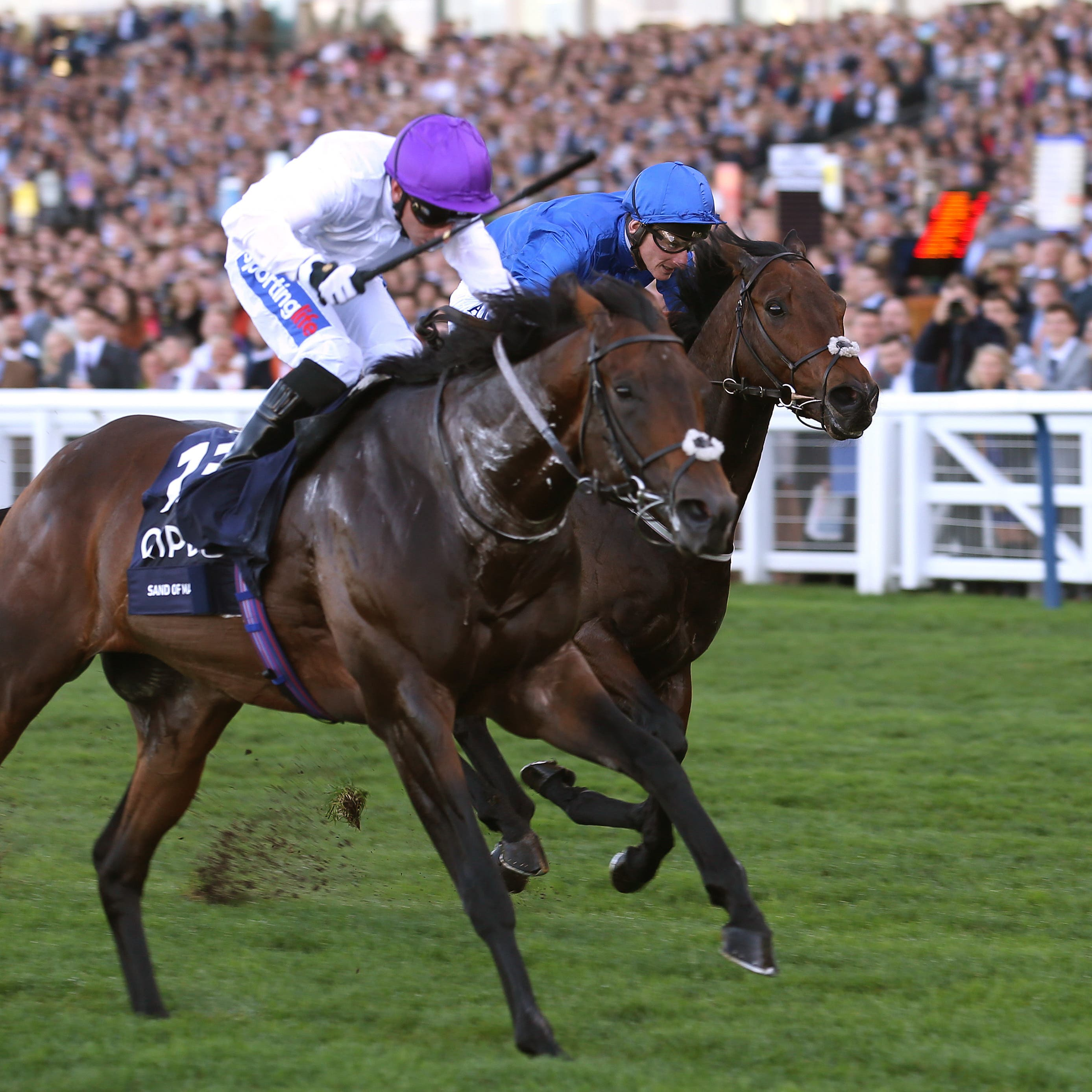 Sands Of Mali and Paul Hanagan win the British Champion Sprint Stakes at Ascot