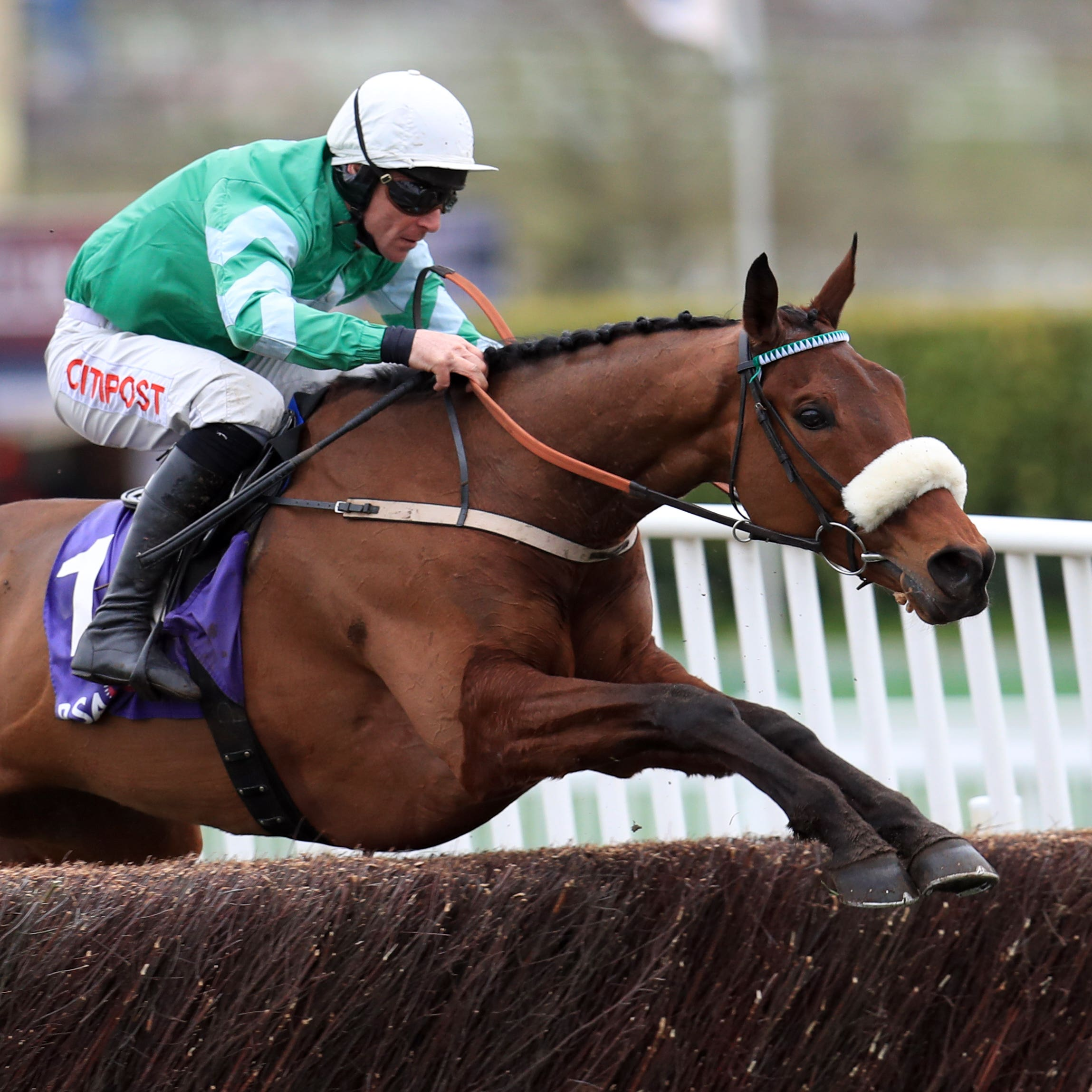 Presenting Percy on his way to winning at Cheltenham