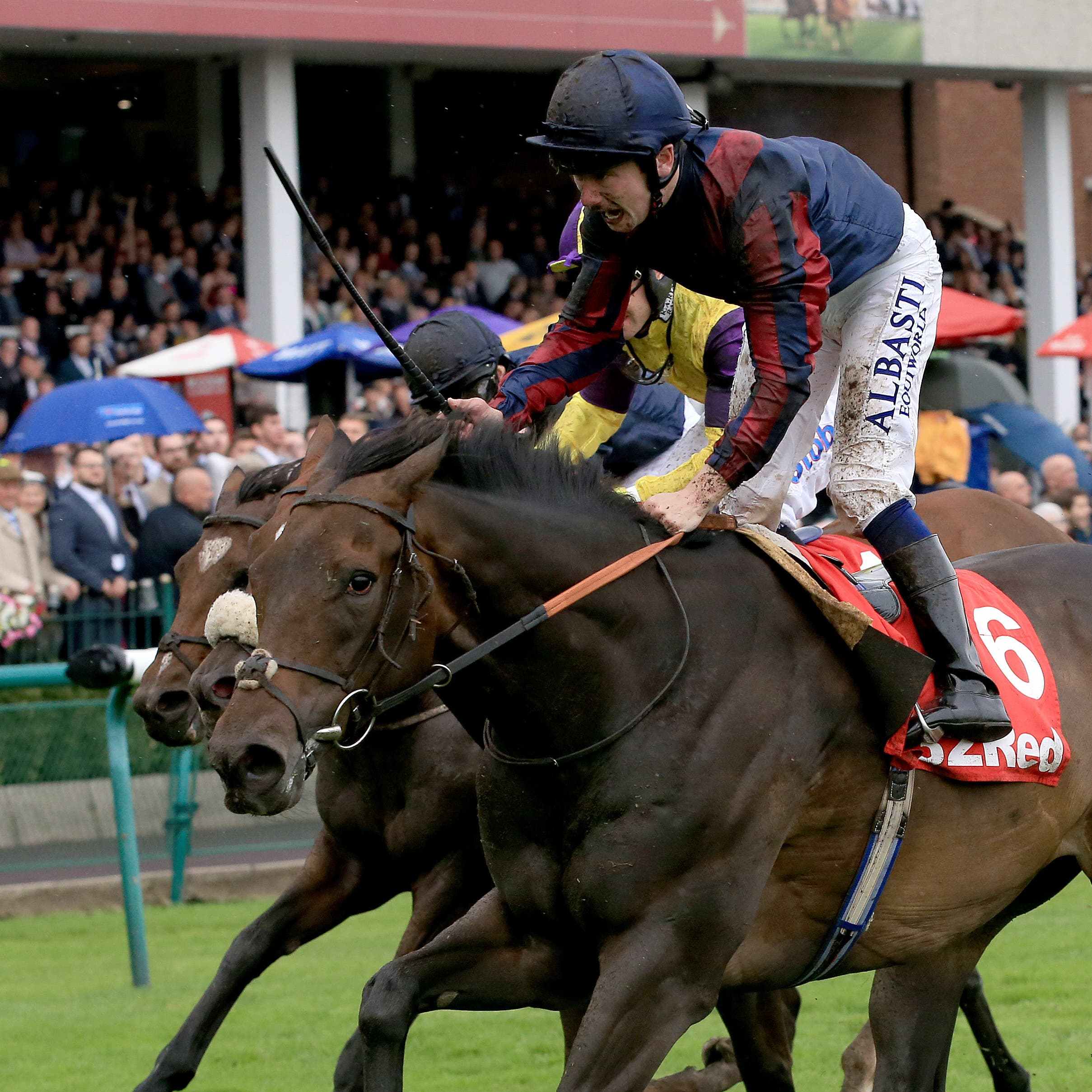 The Tin Man winning at Haydock last time out