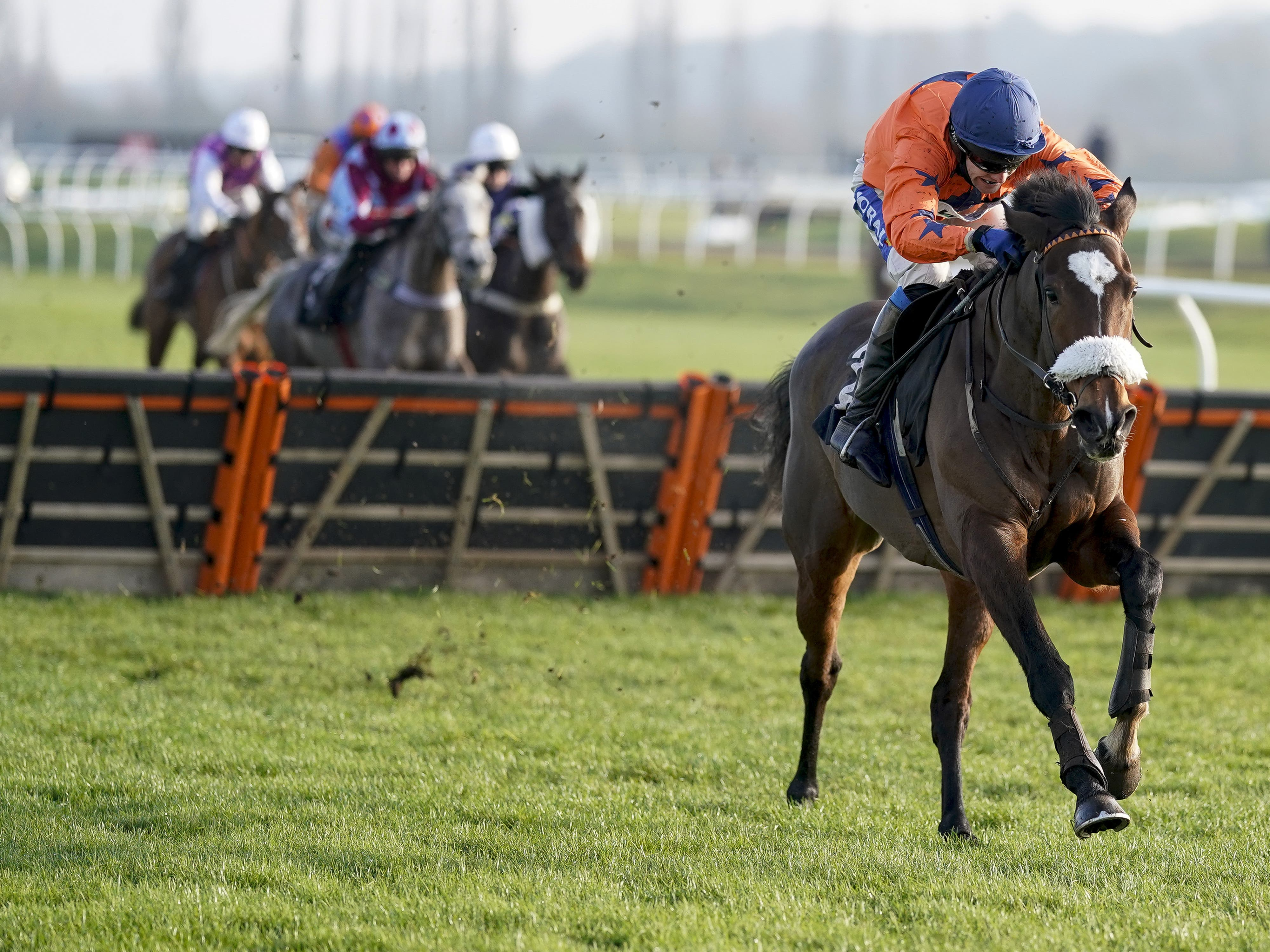 Panic Attack goes for a second win at Newbury (Alan Crowhurst/PA)