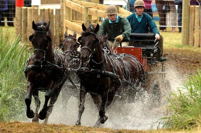 Philip competes at the Sandringham Country Show Horse Driving Trials