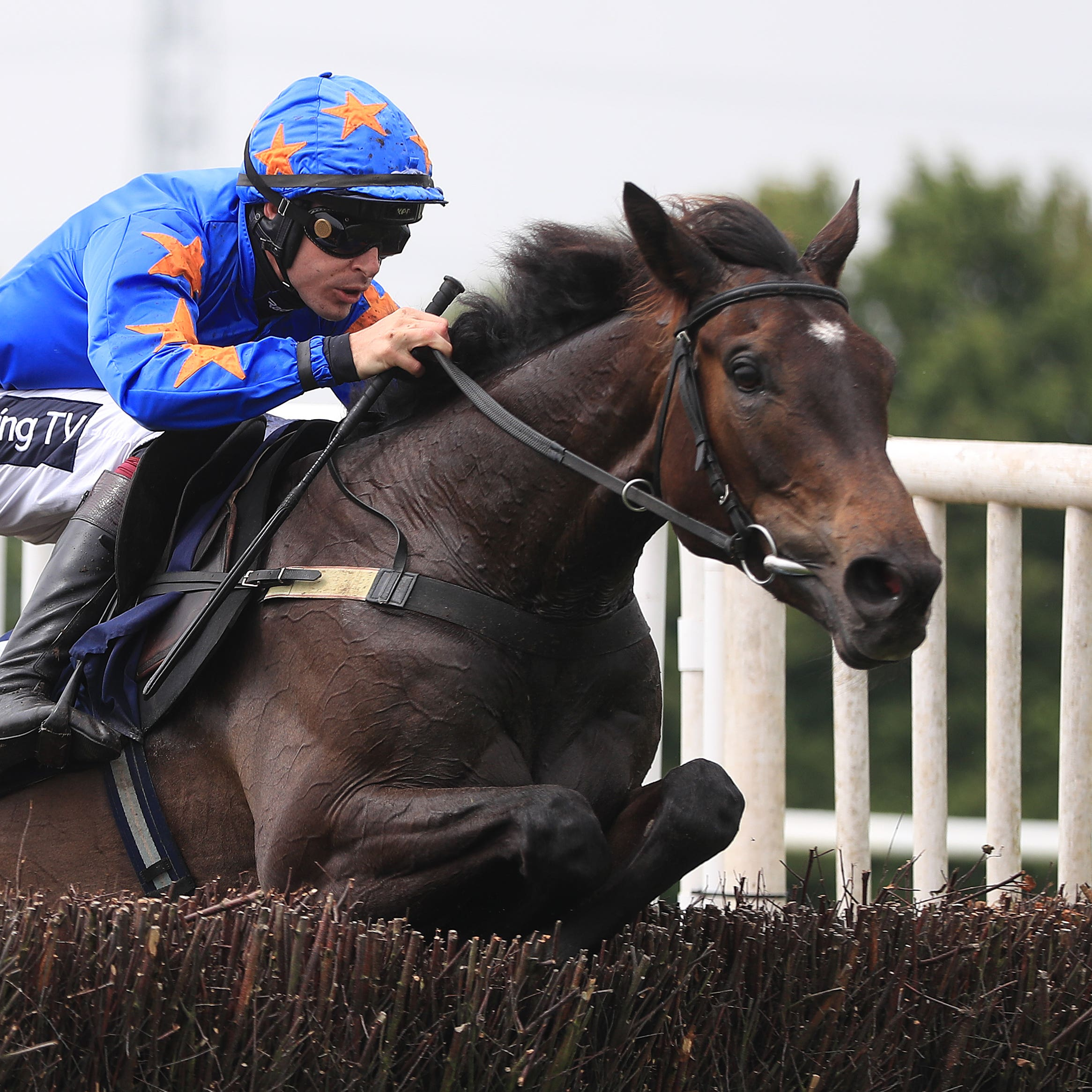 The Jam Man, ridden by Aidan Coleman, jumps the last to win the Jigsaw Sports Branding Novices' Handicap Chase at Southwell