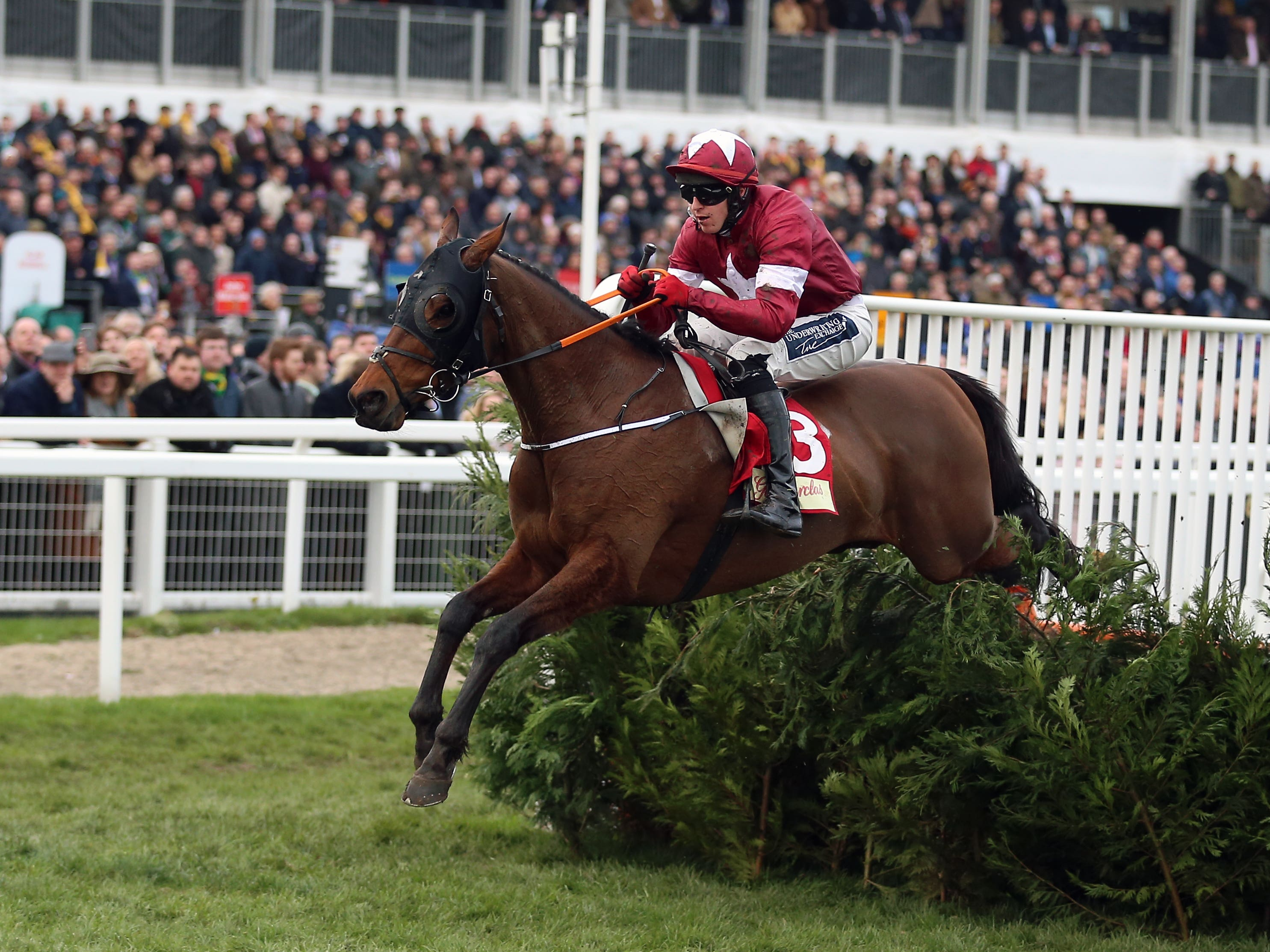 Tiger Roll jumps the last well clear (Nigel French/PA)
