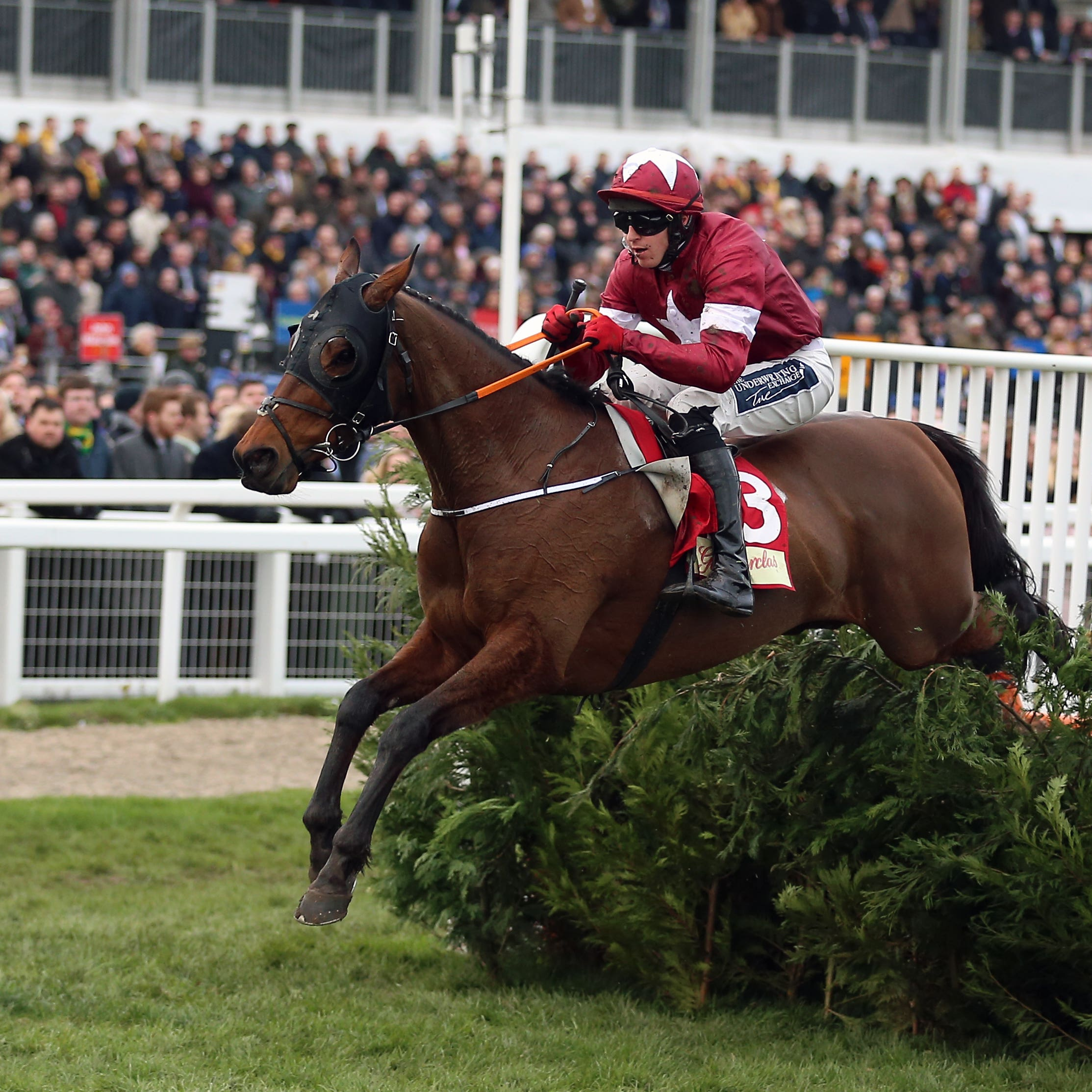 Tiger Roll jumps the last well clear