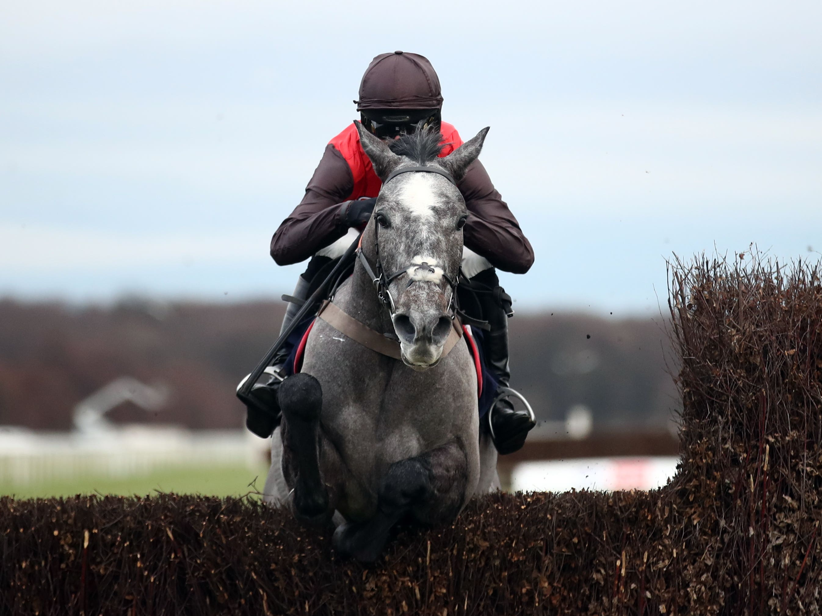 Stratagem and Harry Cobden on their way to victory in the Sky Bet Beginners' Chase at Doncaster (Tim Goode/PA)