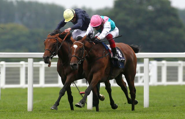 Enable (right) went head-to-head with Crystal Ocean down the Ascot straight