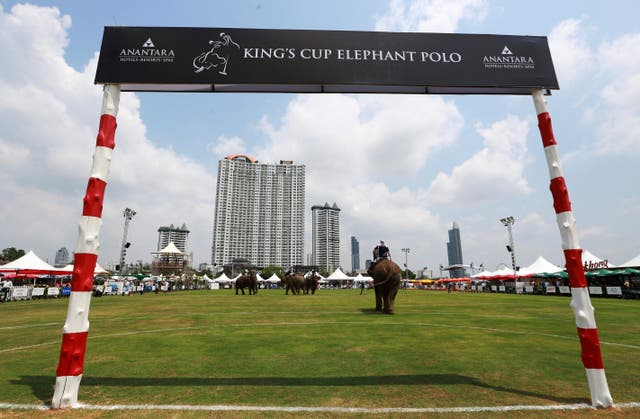 The King's Cup Elephant Polo tournament in Bangkok (Sakchai Lalit/AP)